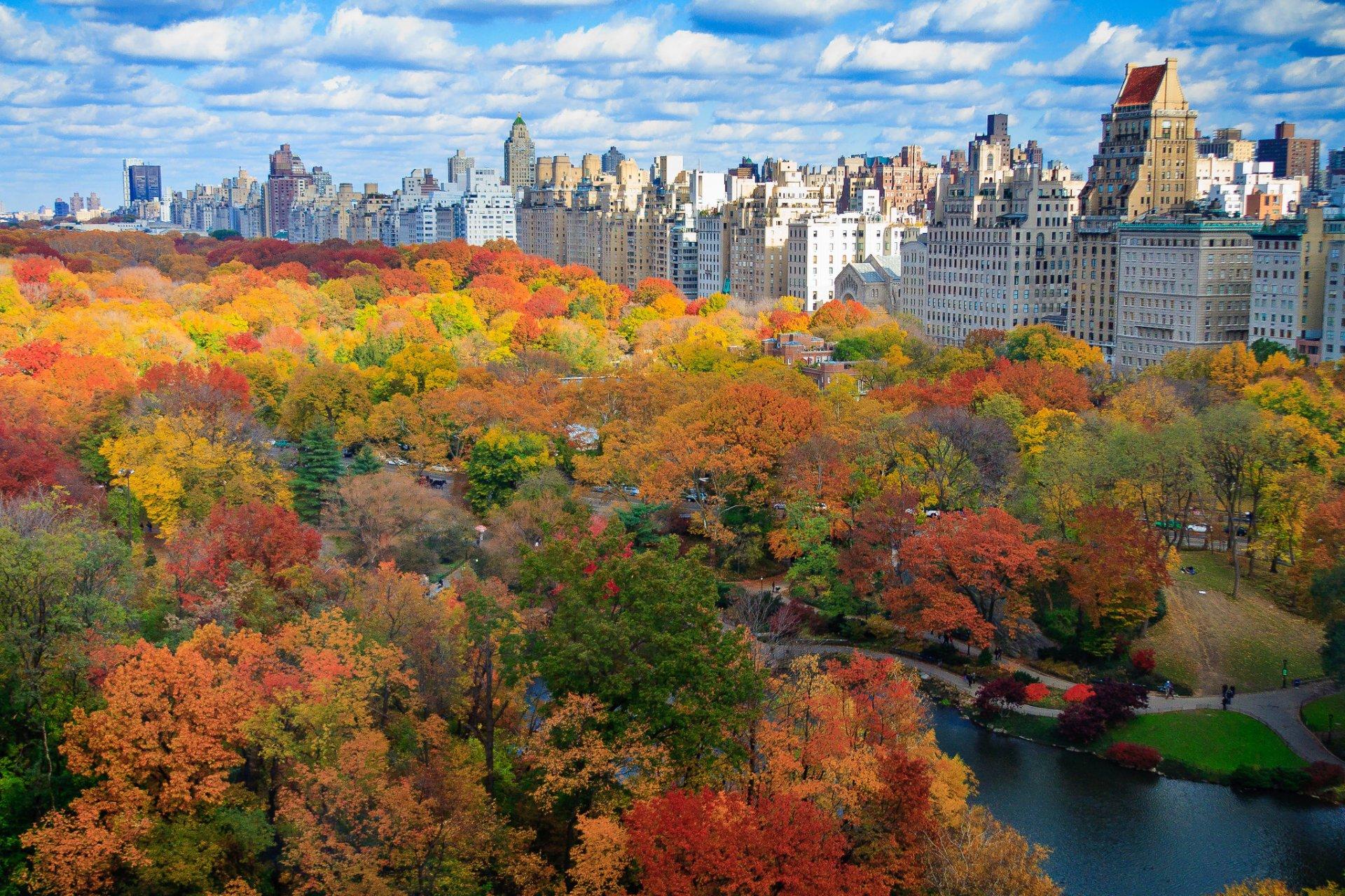 NYC Herbstlaub in New York City NYC, 21