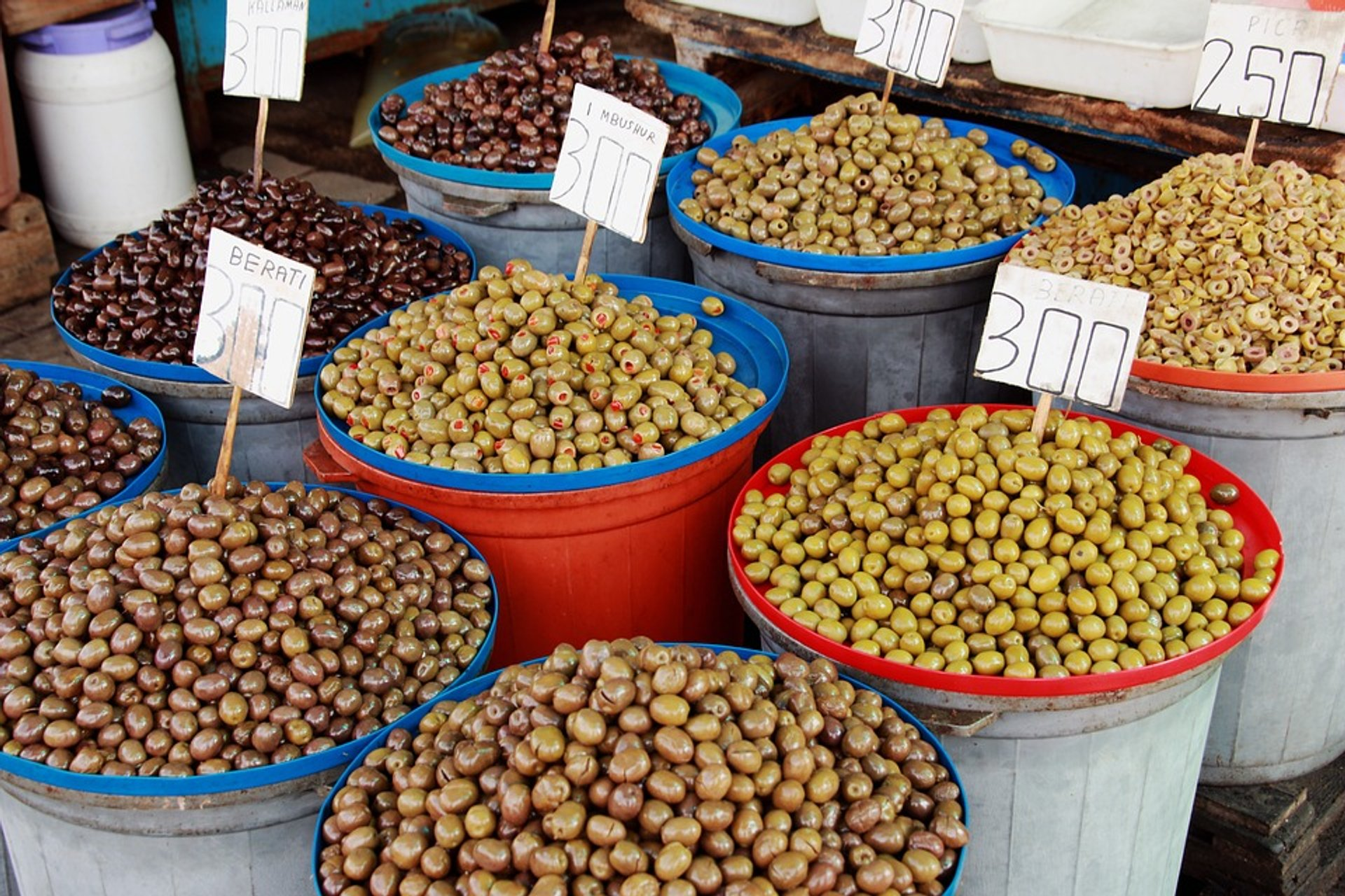 Olive Harvest in Albania 2020 - Best Time