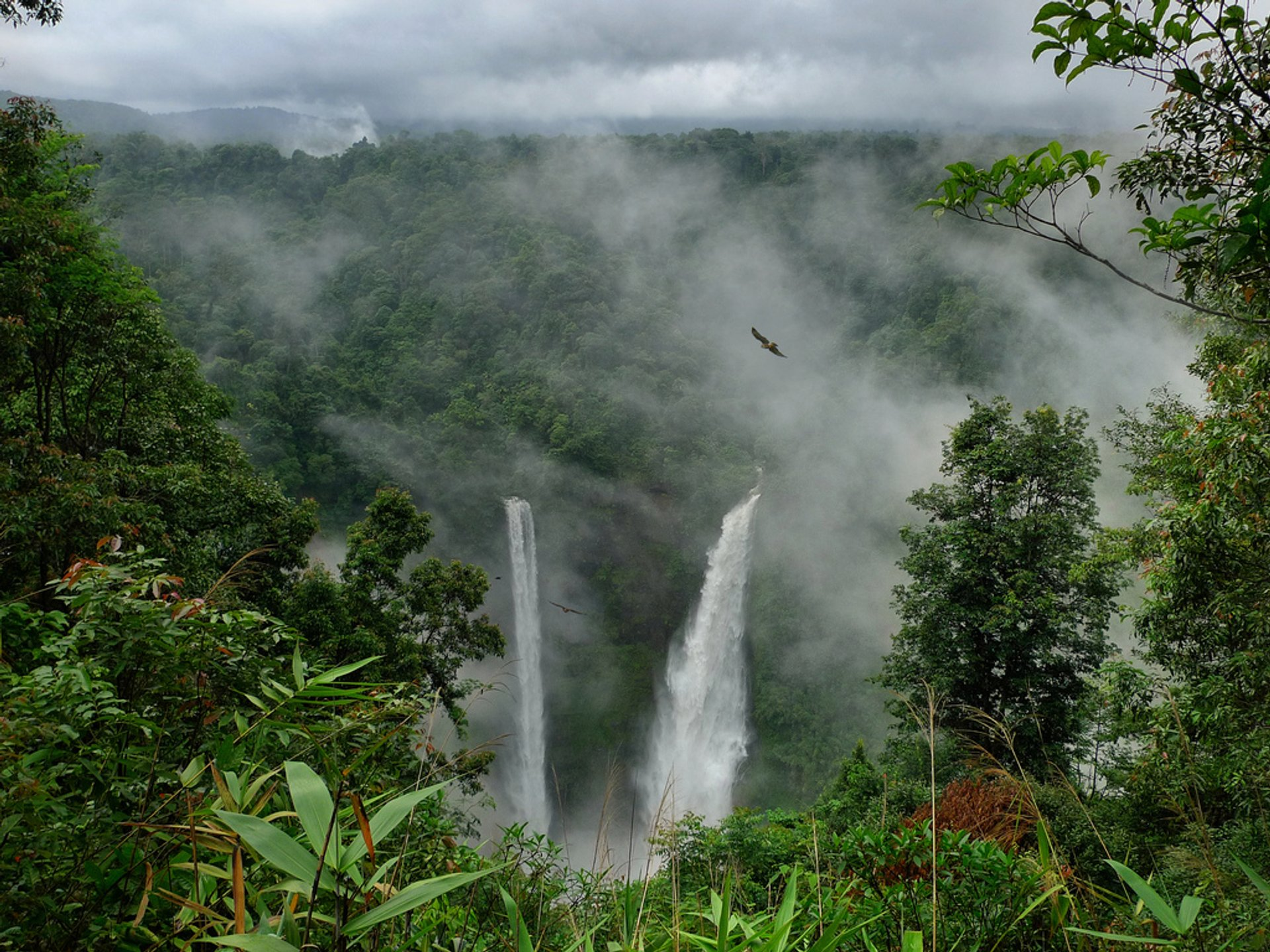 Trekking to Bolaven Plateau & Tad Fane Waterfall in Laos 2020 - Best Time