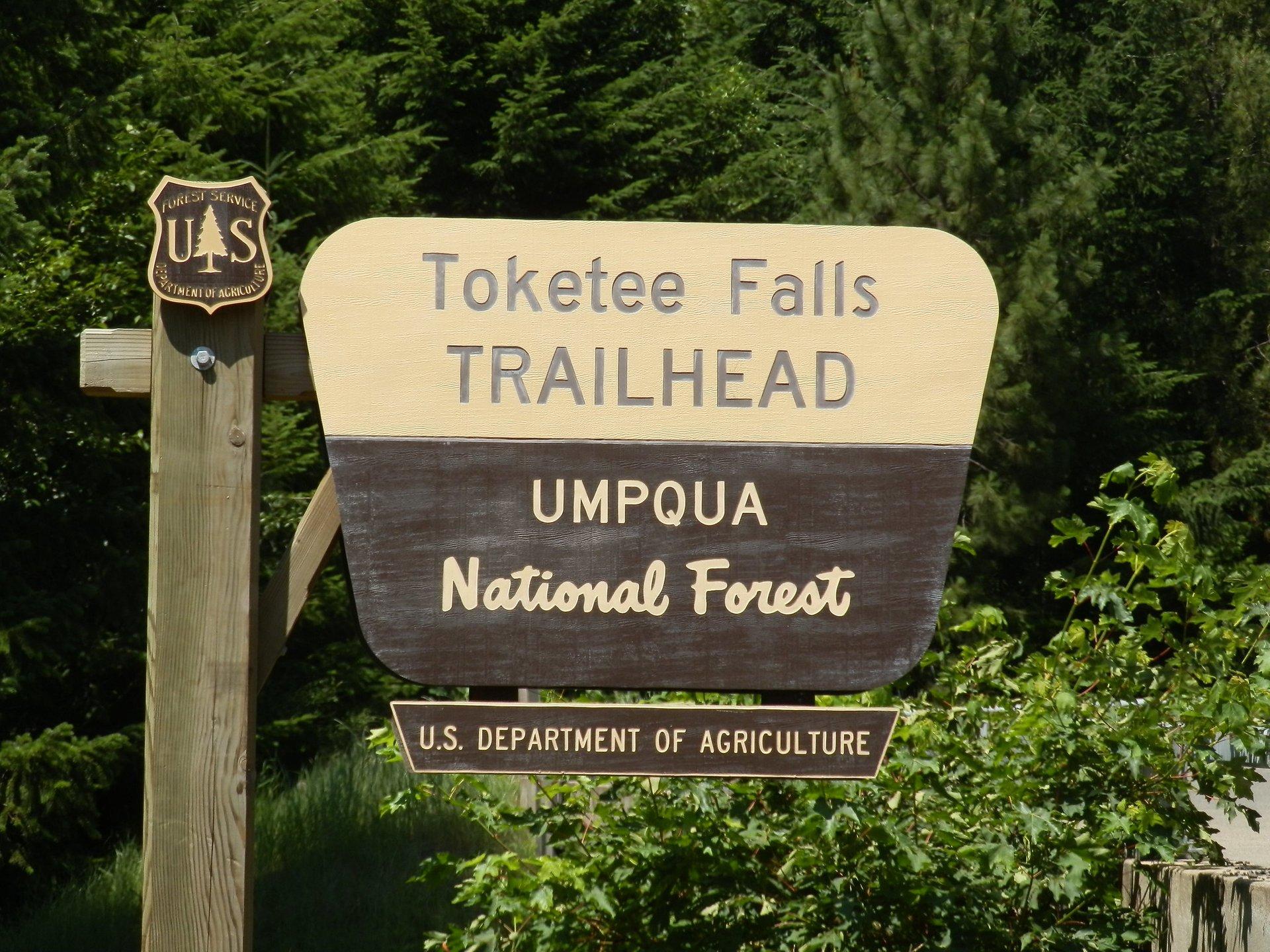Toketee Falls Trailhead 2020