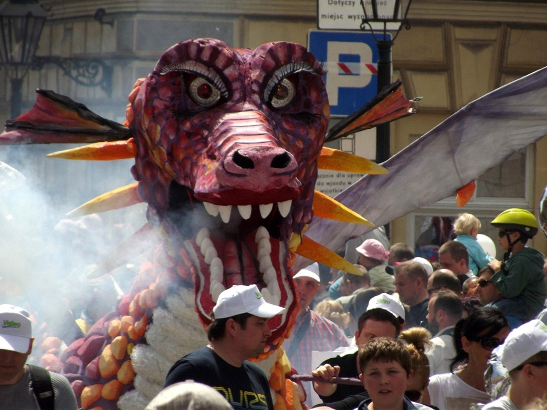 Great Dragon Parade in Krakow - Best Season 2020