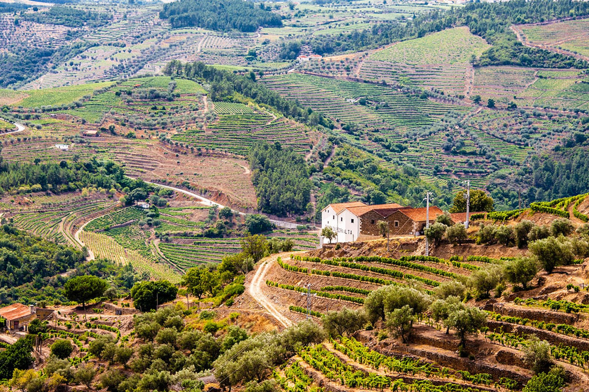 Exploring Douro Valley in Portugal 2020 - Best Time