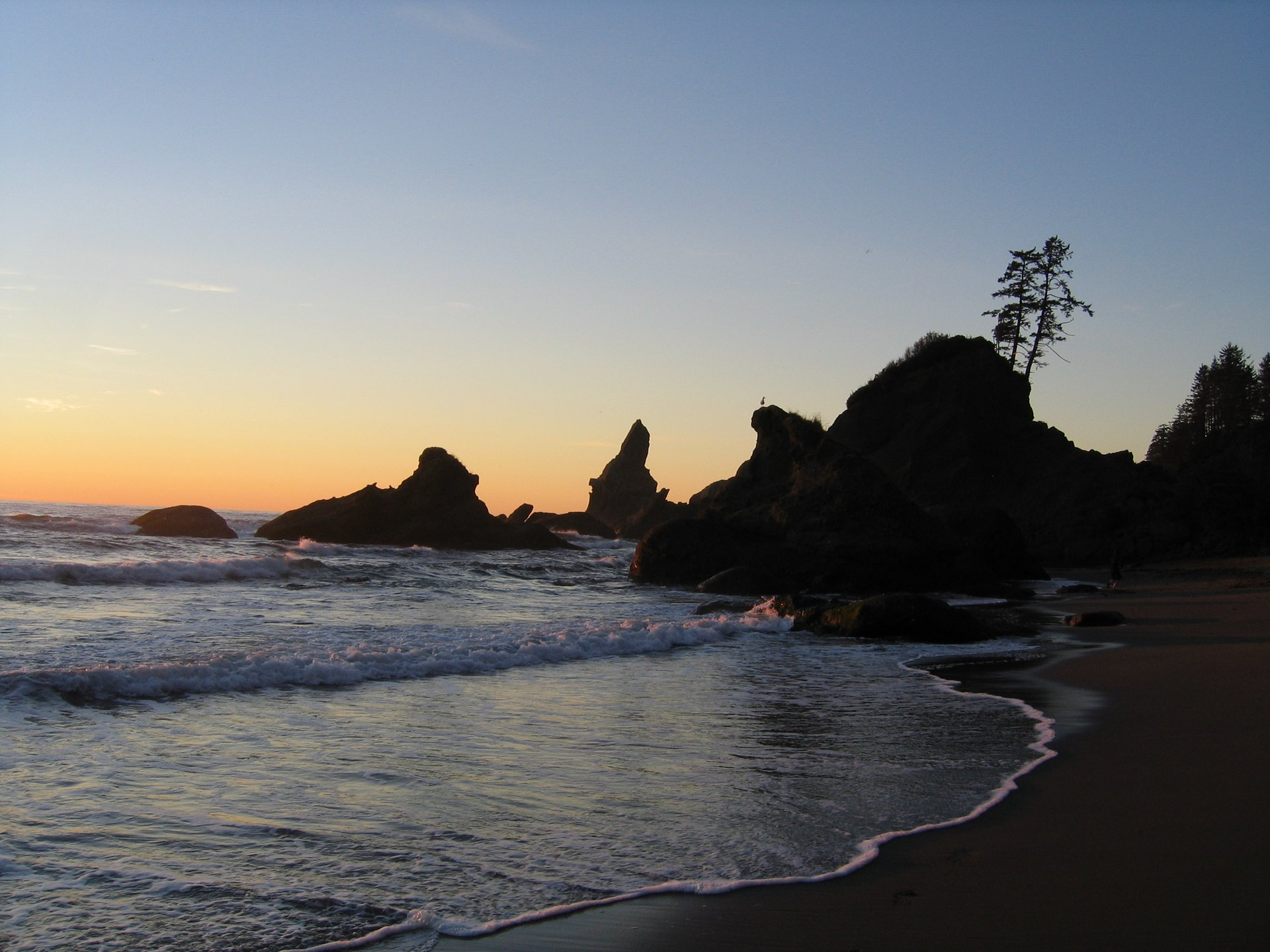 Shi Shi Beach rocks at sunset 2020