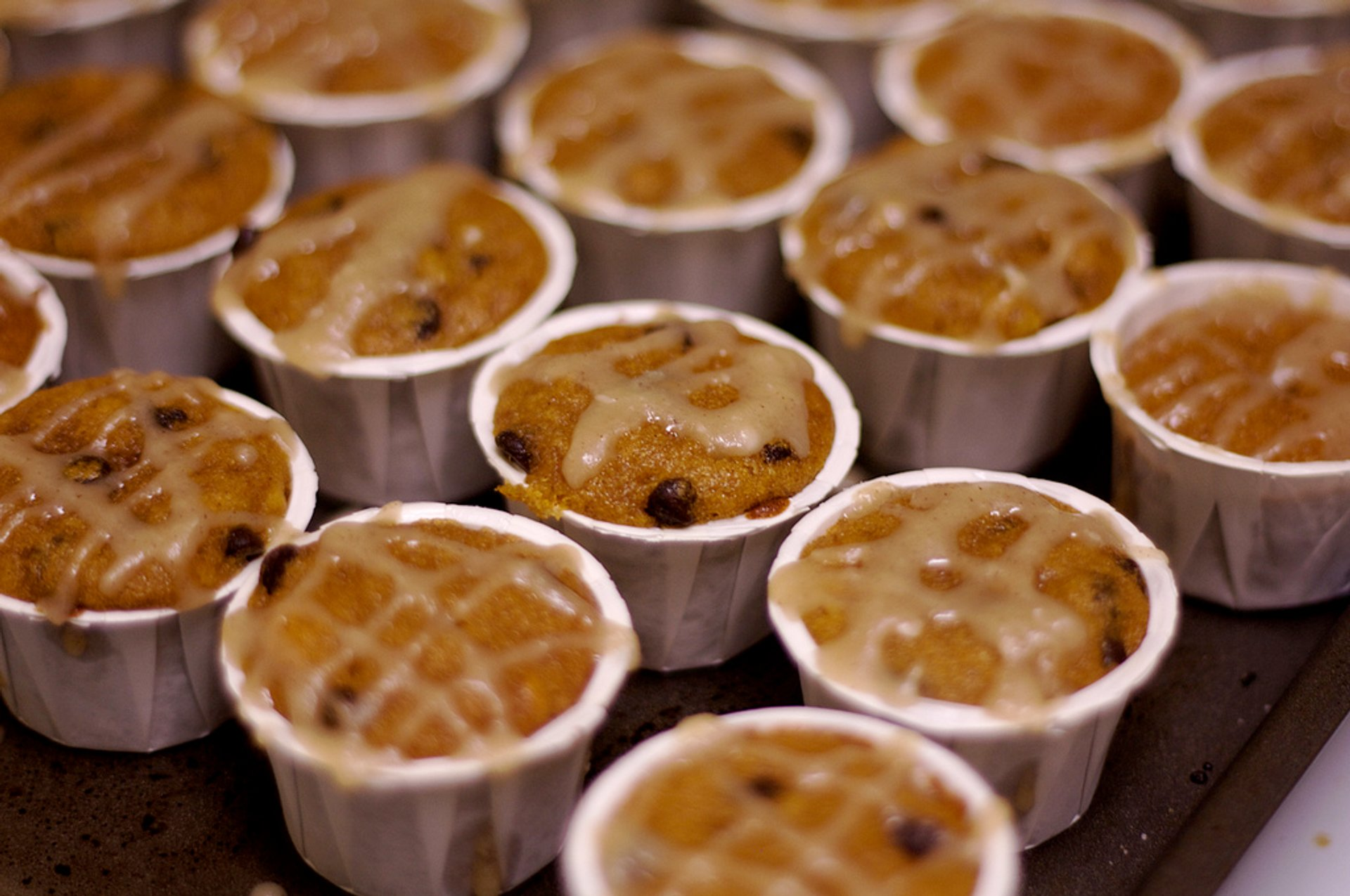 Pumpkin chocolate chip cupcakes  2020