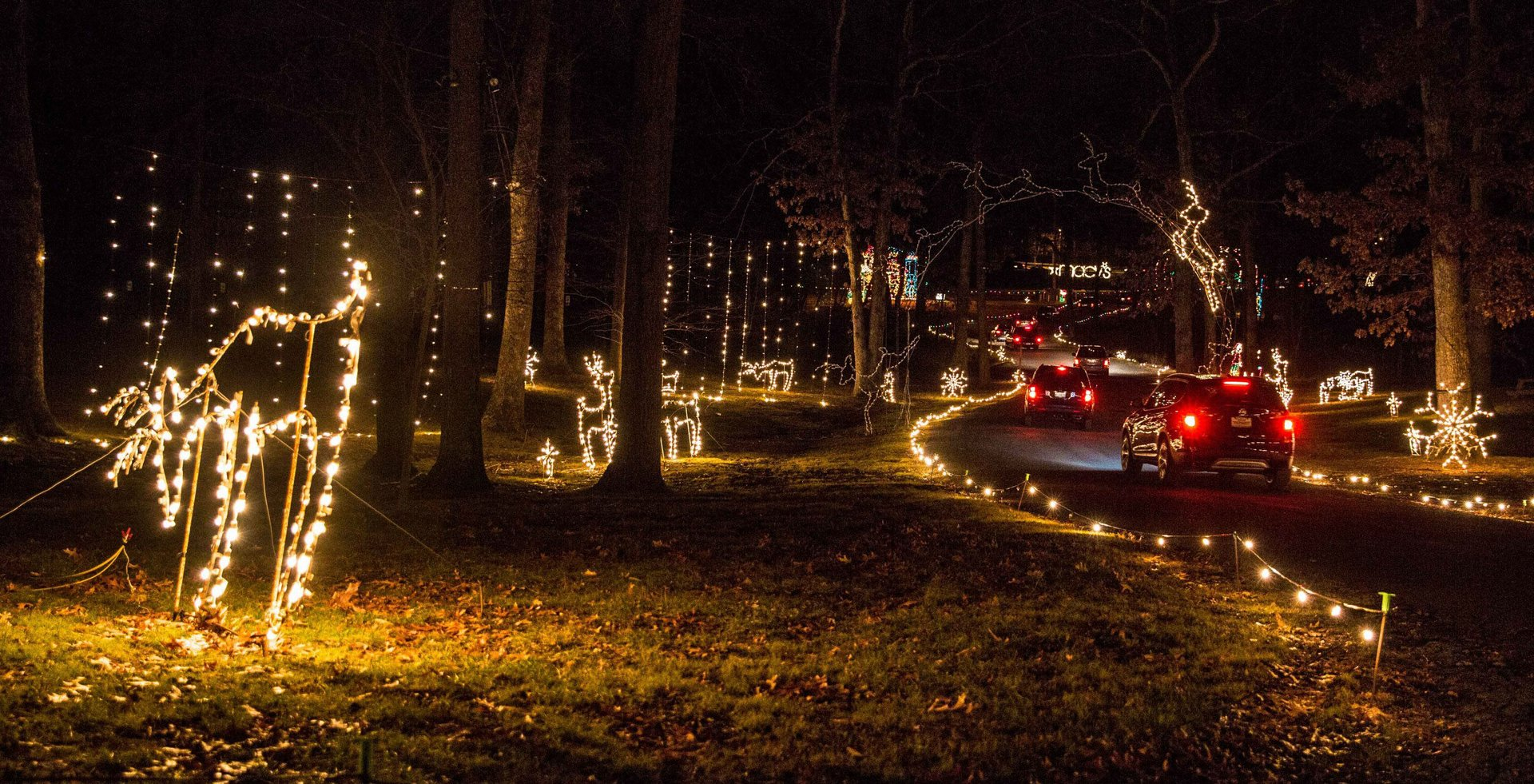 Merriweather Symphony of Lights in Maryland - Best Season 2020