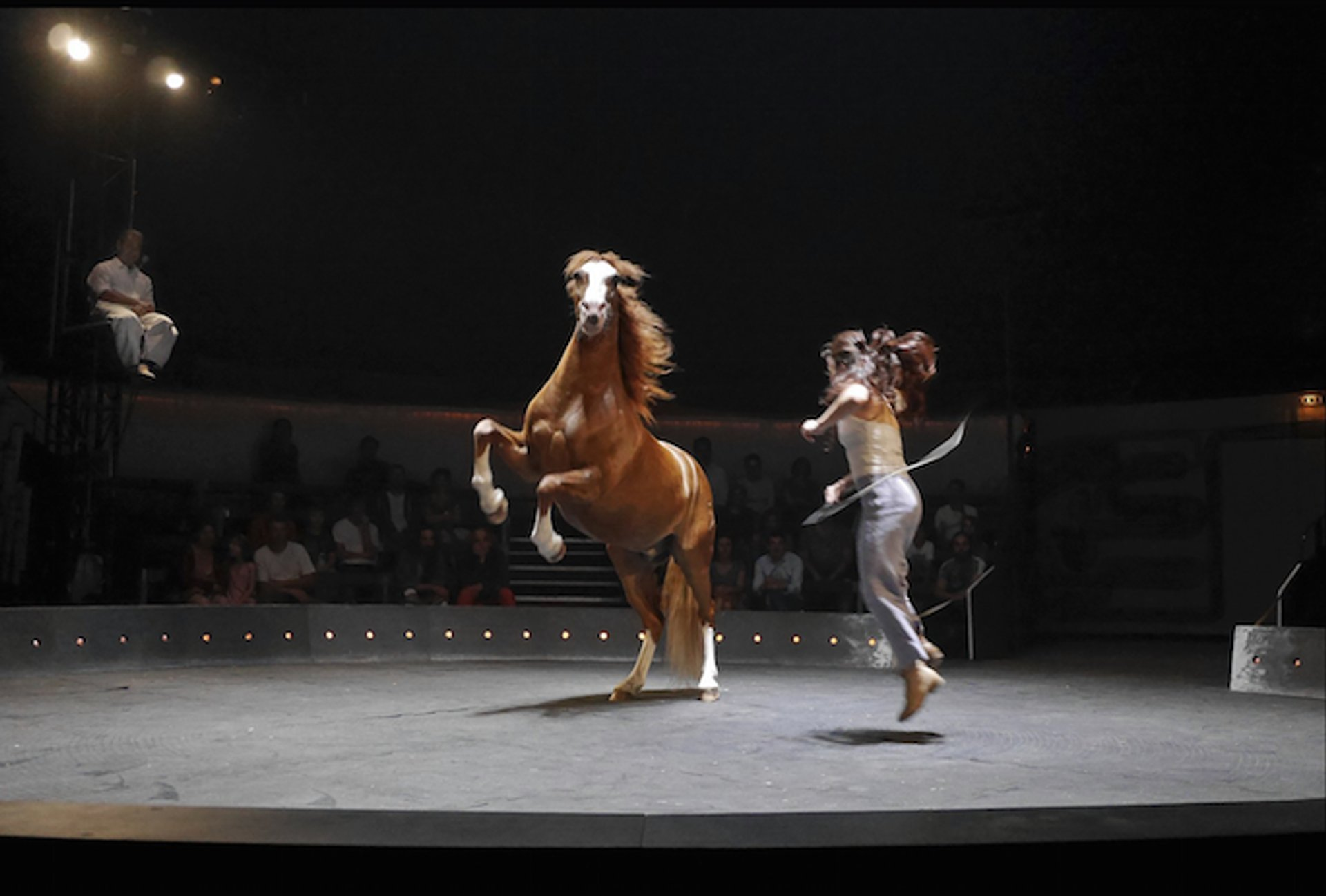 L Entre Deux Biennales Circus Festival 2021 In Provence French Riviera Dates