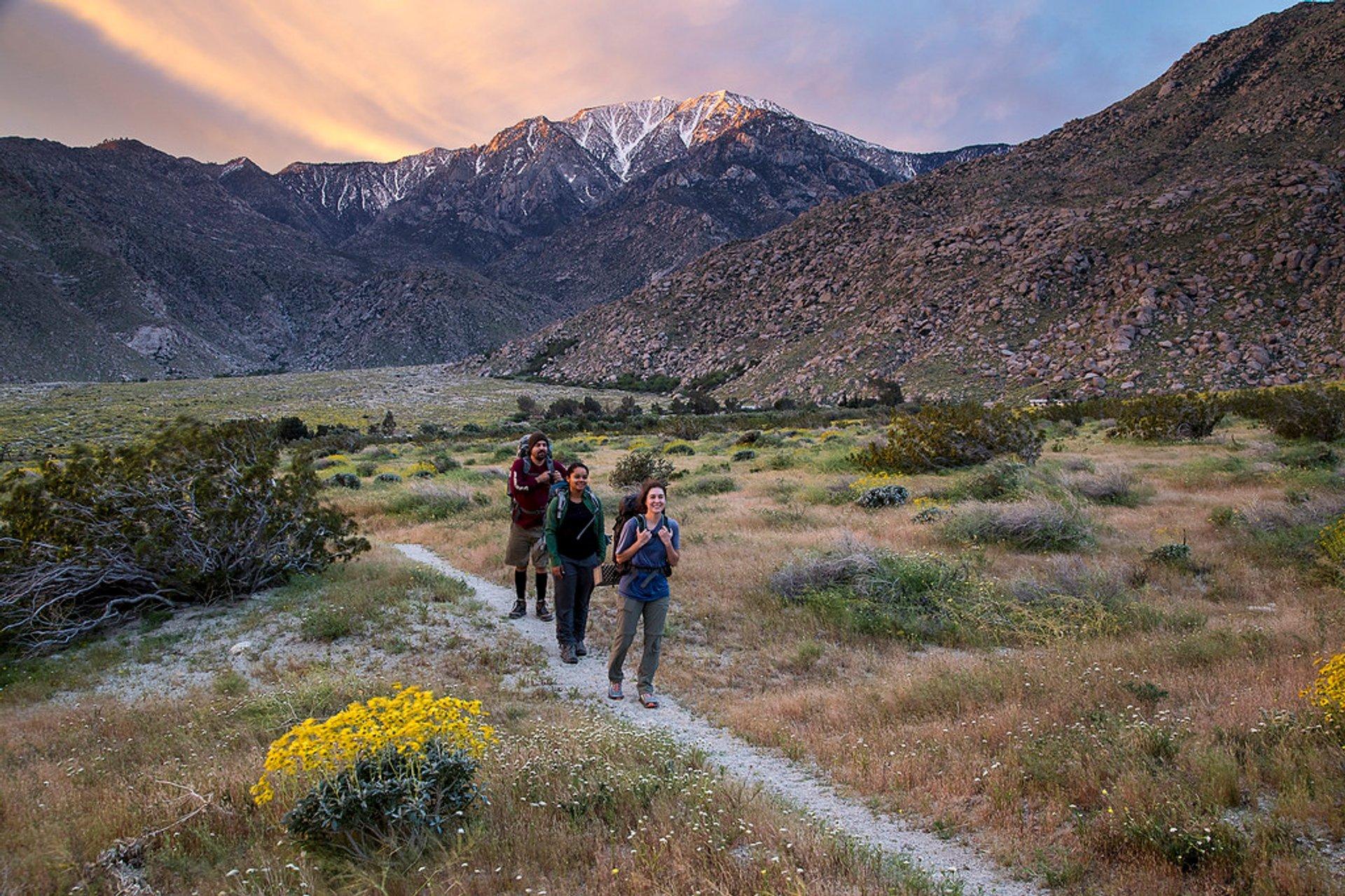 Pacific Crest Trail in California - Best Season 2019