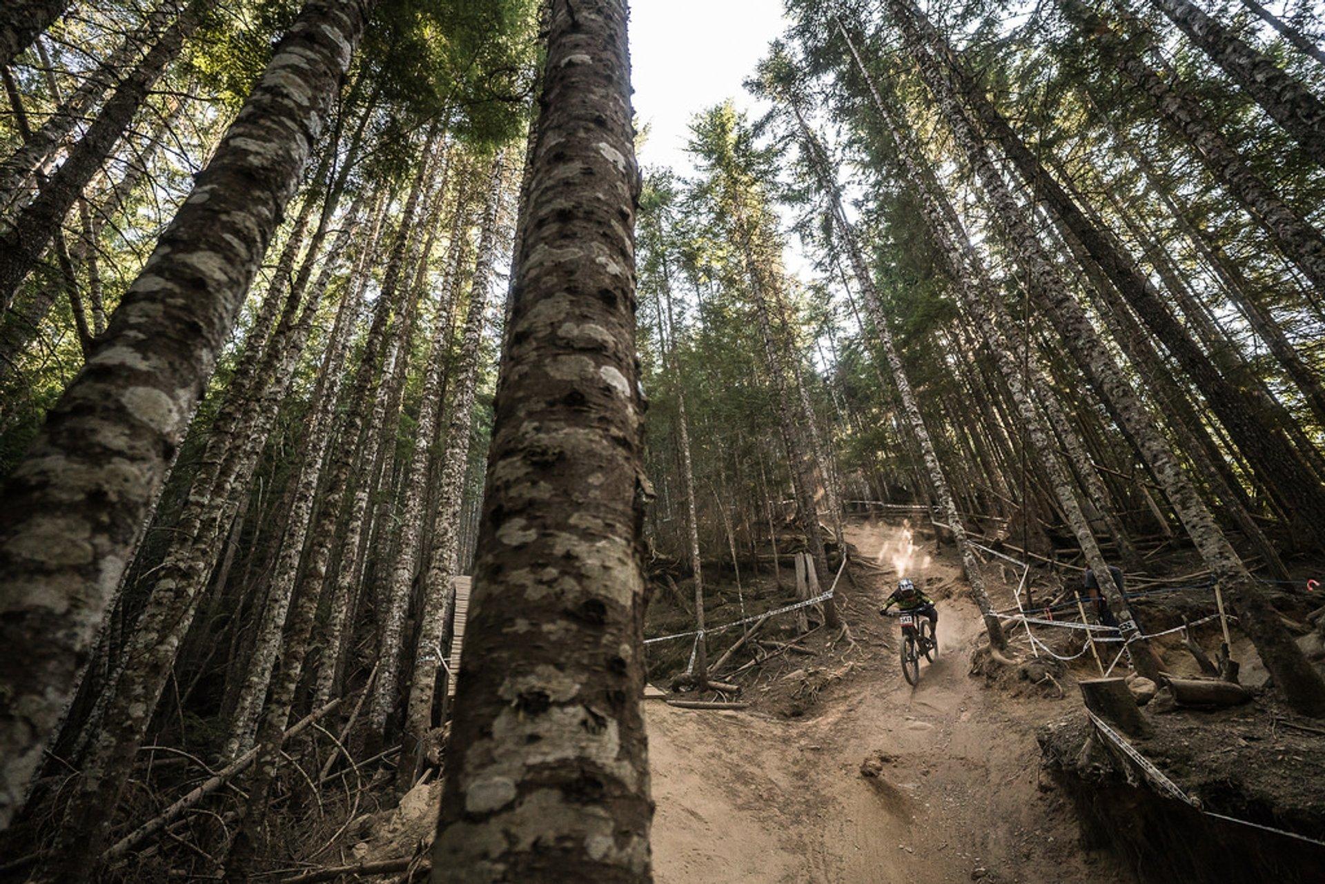Crankworx Whistler - Canadian Open DH  2020