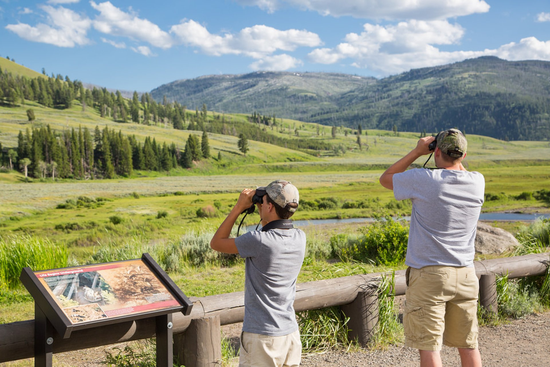 Watching for wildlife, Lamar Valley 2019