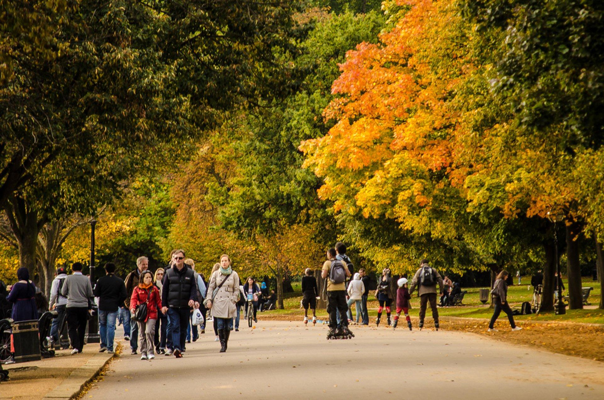 Autumn in London - Best Season 2020