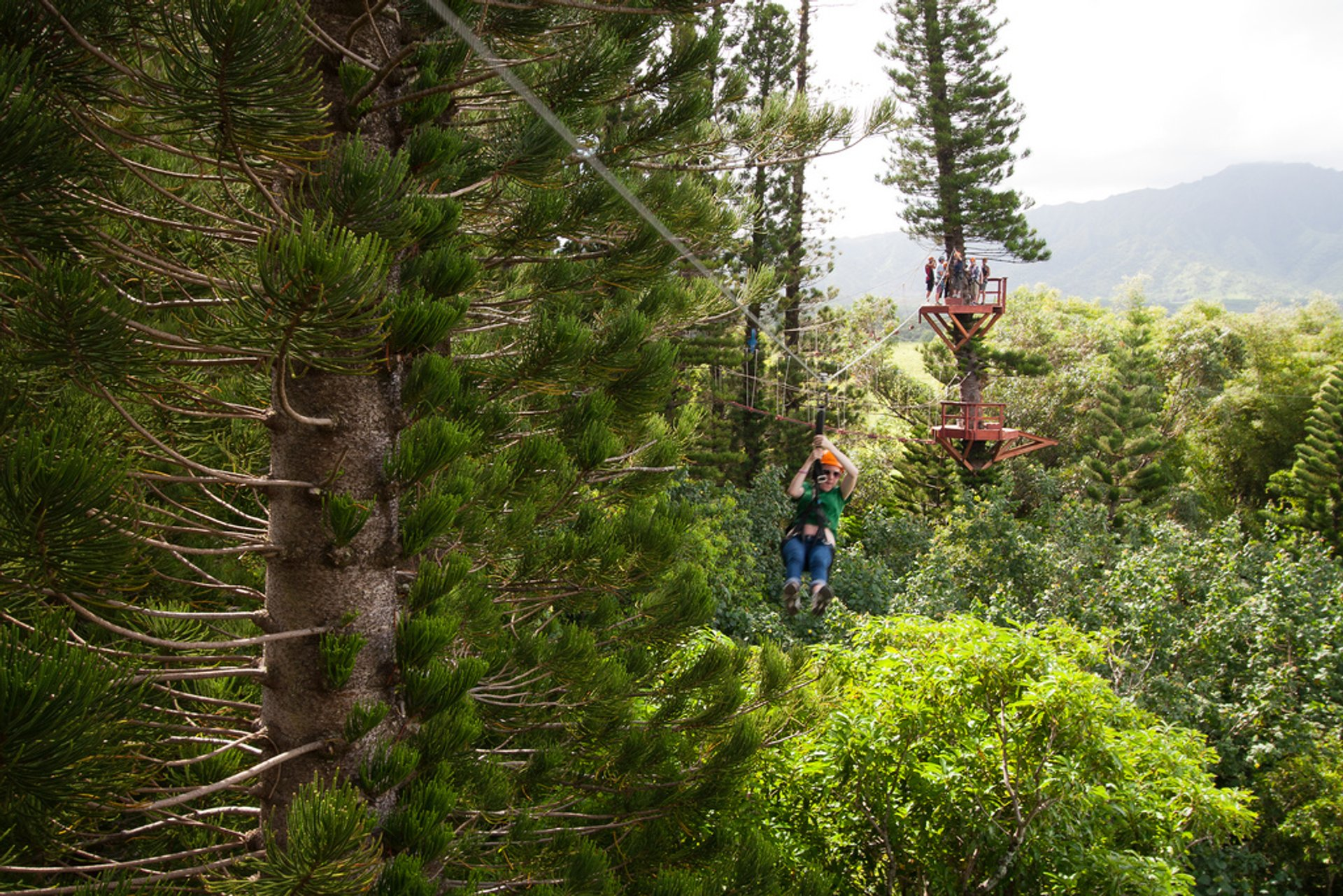 Best time to see Ziplining in Hawaii