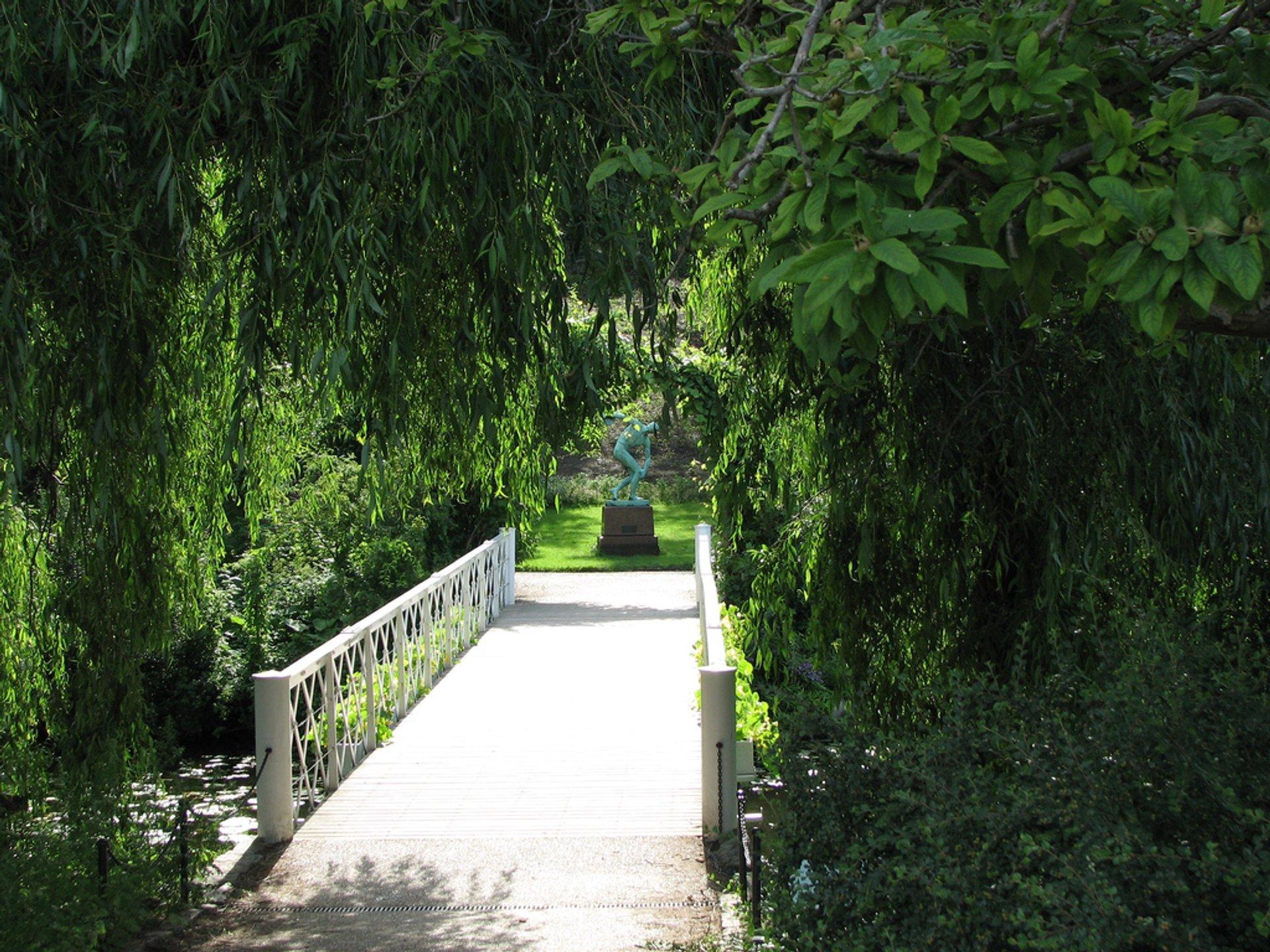 Botanisk Have (Botanical Garden) in Copenhagen - Best Season 2020