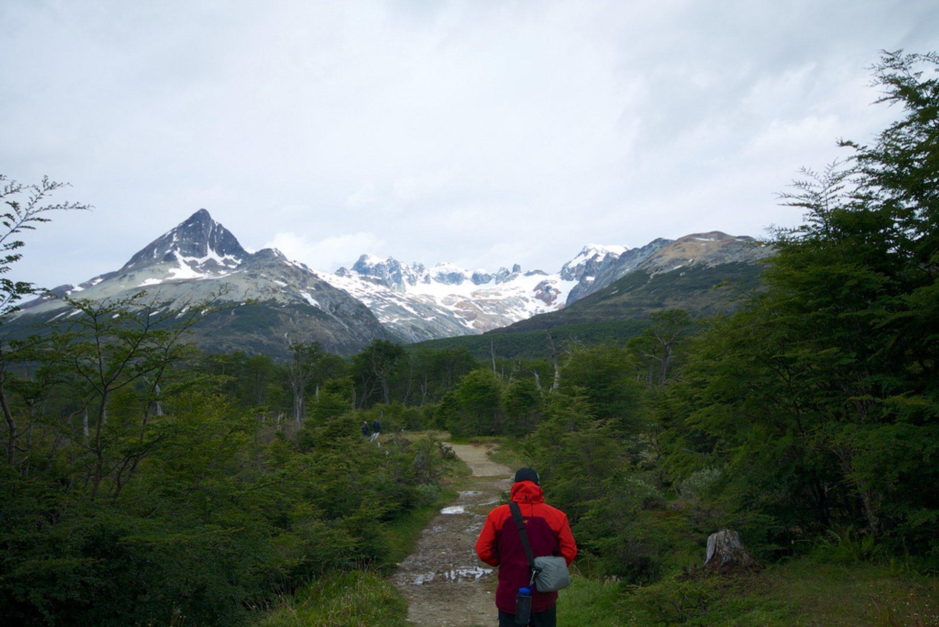 Trekking to Laguna Esmeralda, Tierra del Fuego 2020