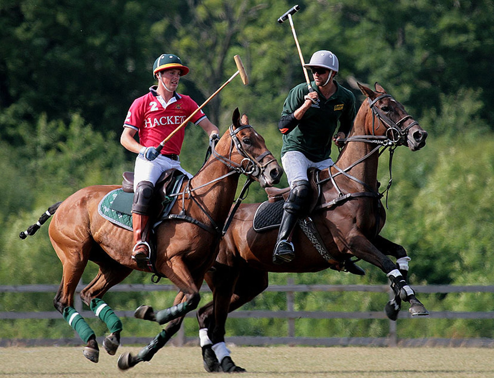 Polo  in England - Best Season 2019