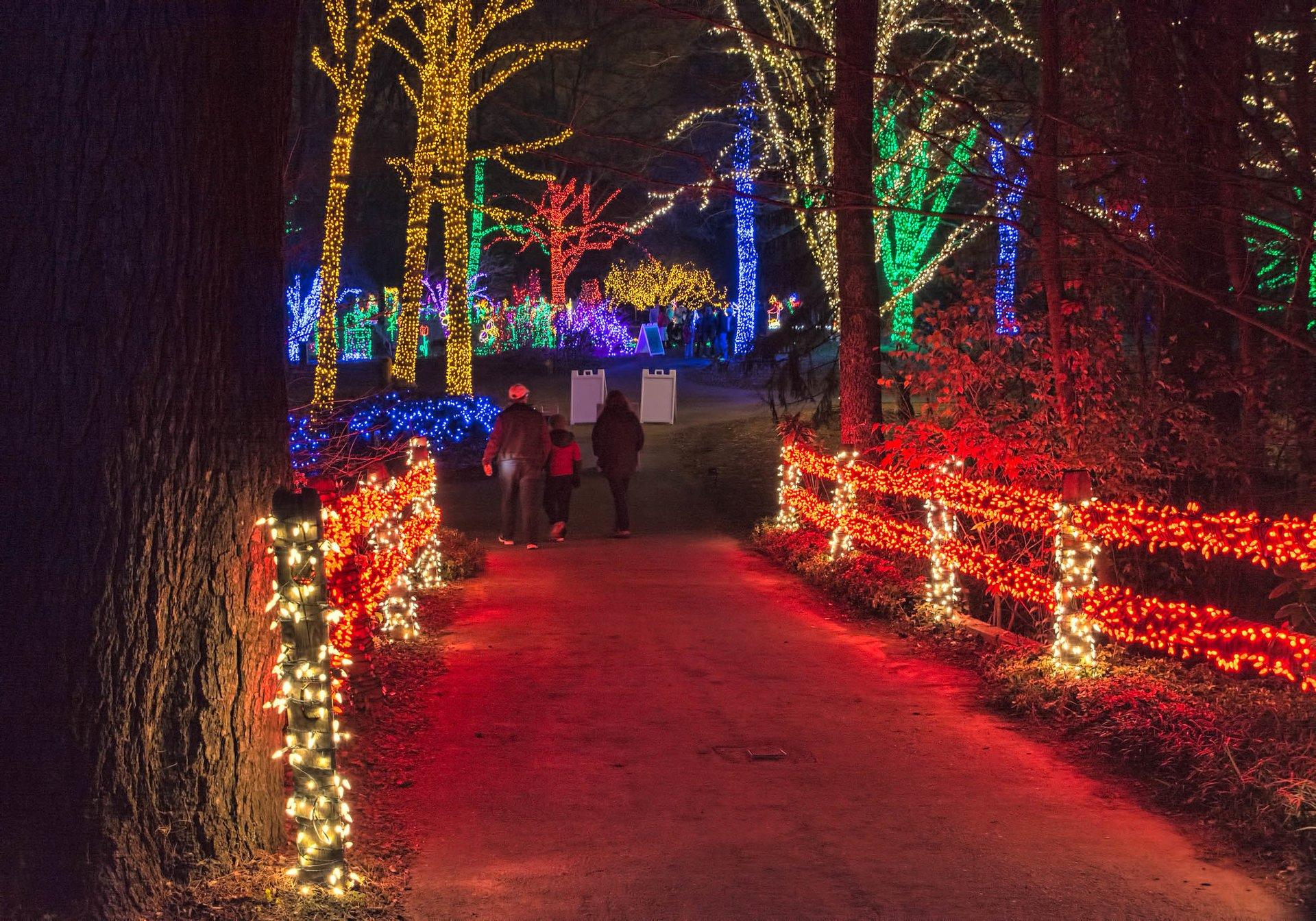 Winter Walk of Lights at Meadowlark Botanical Gardens in Virginia 2020 - Best Time