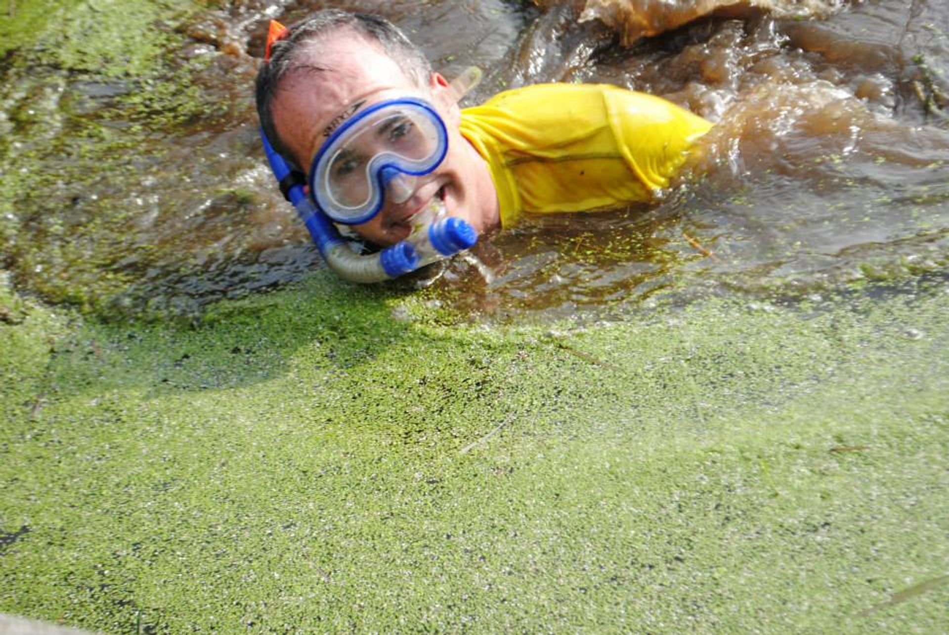 Irish Bog Snorkelling Championship in Ireland 2020 - Best Time