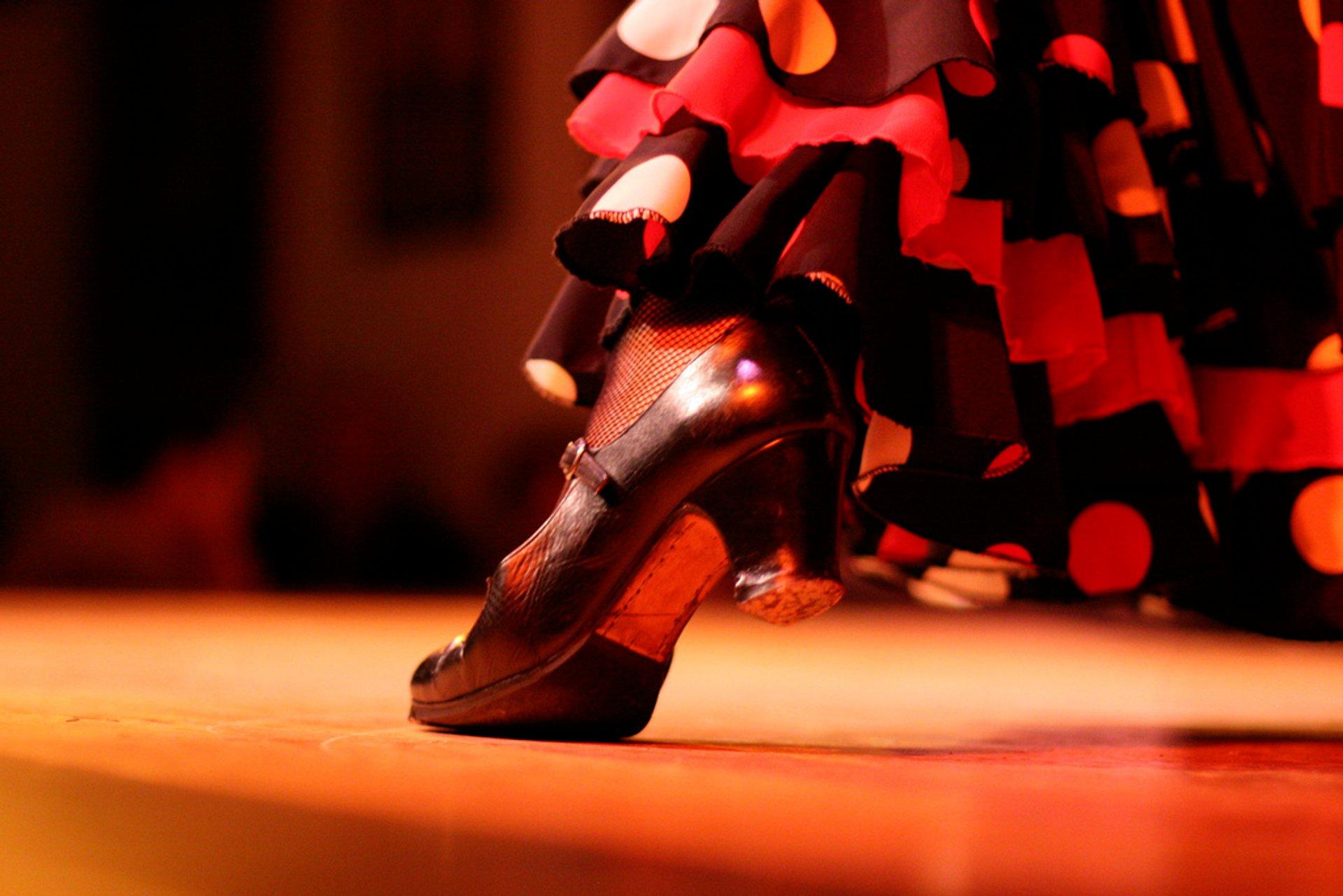 Flamenco in Spain - Best Season 2020