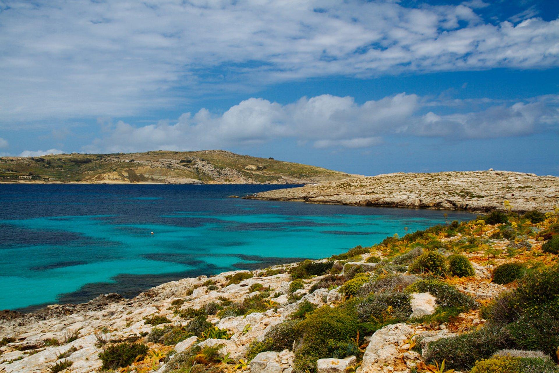 Spring in Malta - Best Season 2020