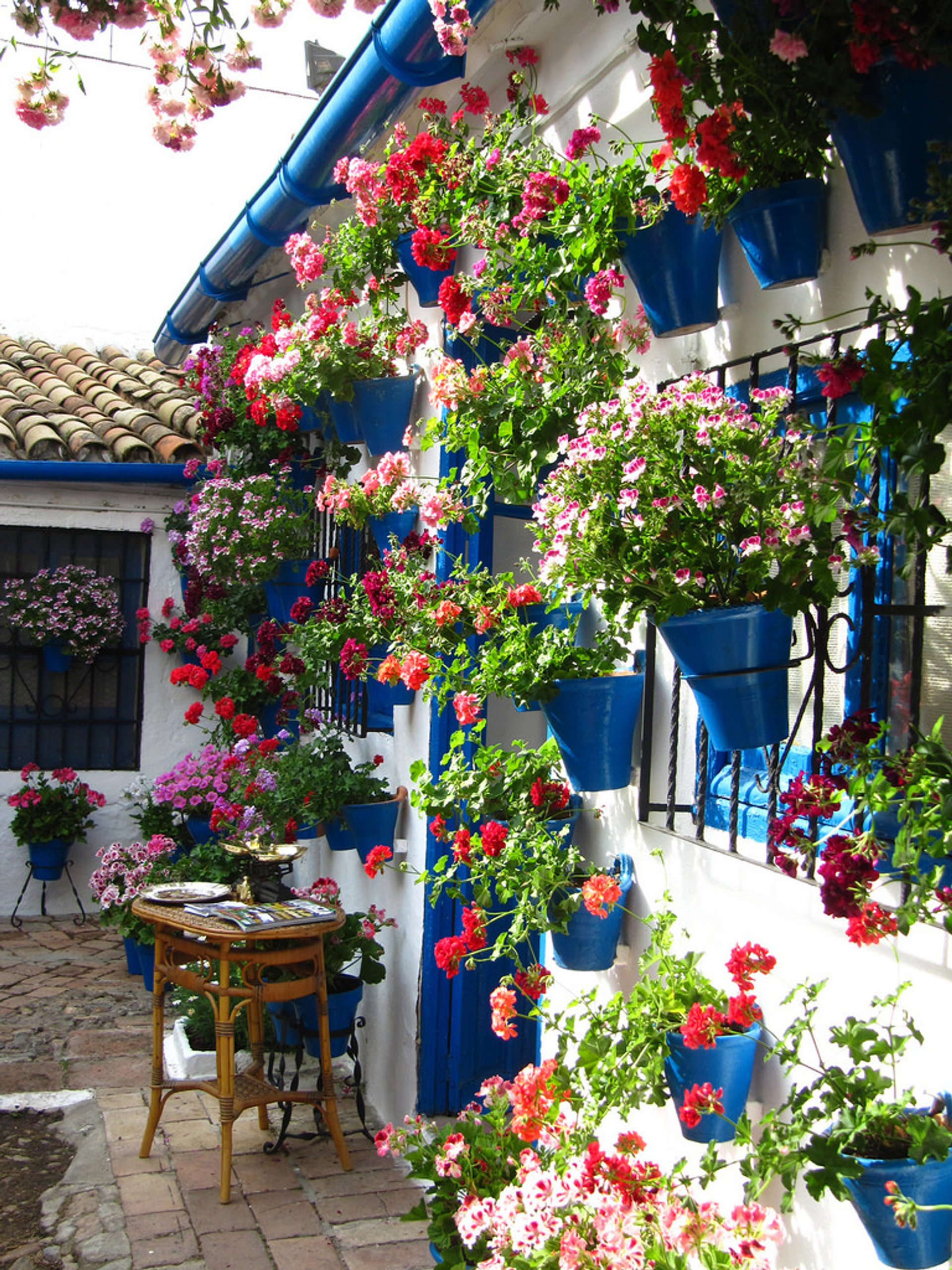 Córdoba Patios Festival in Spain - Best Season