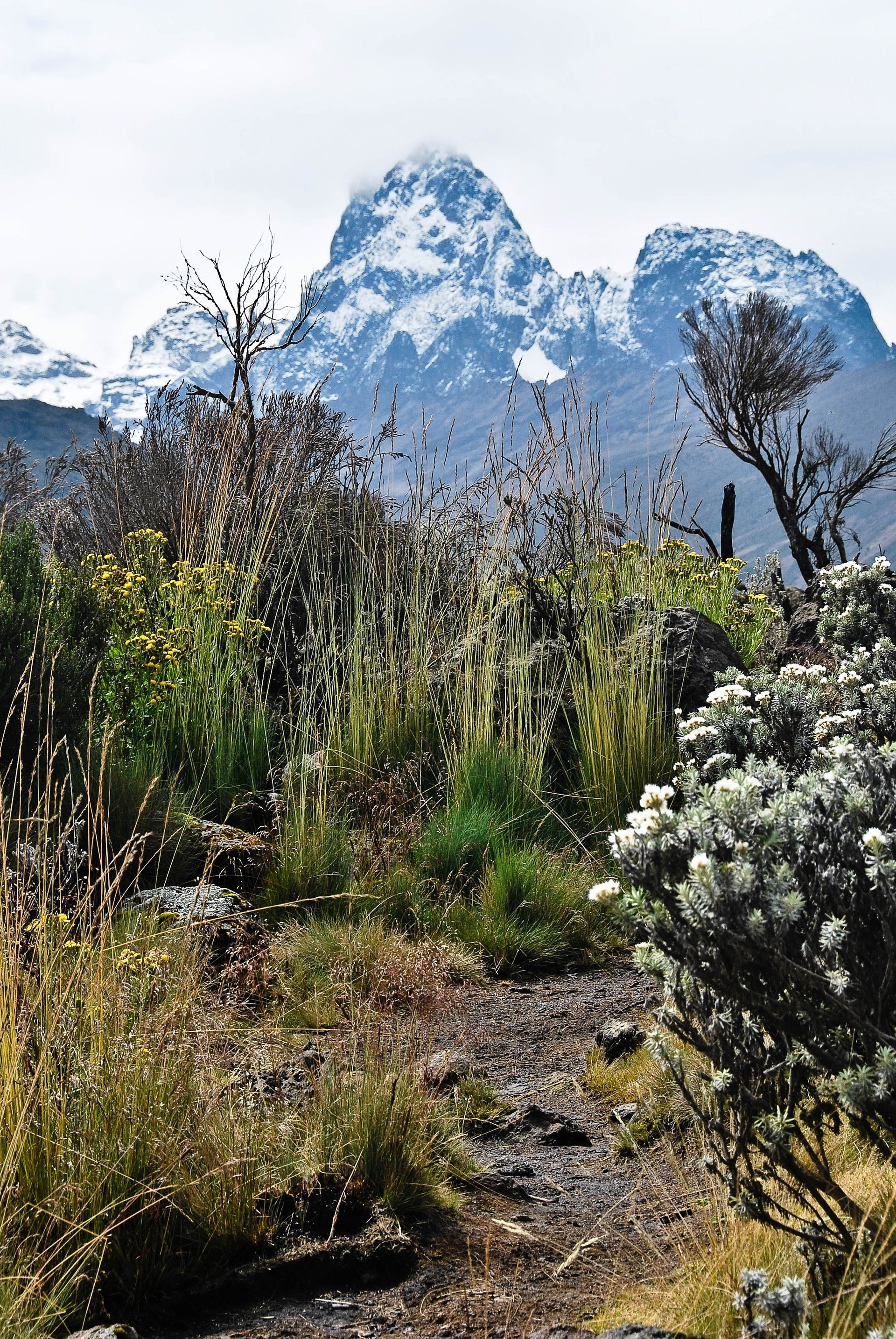 Best time for Mount Kenya Ascent in Kenya 2019