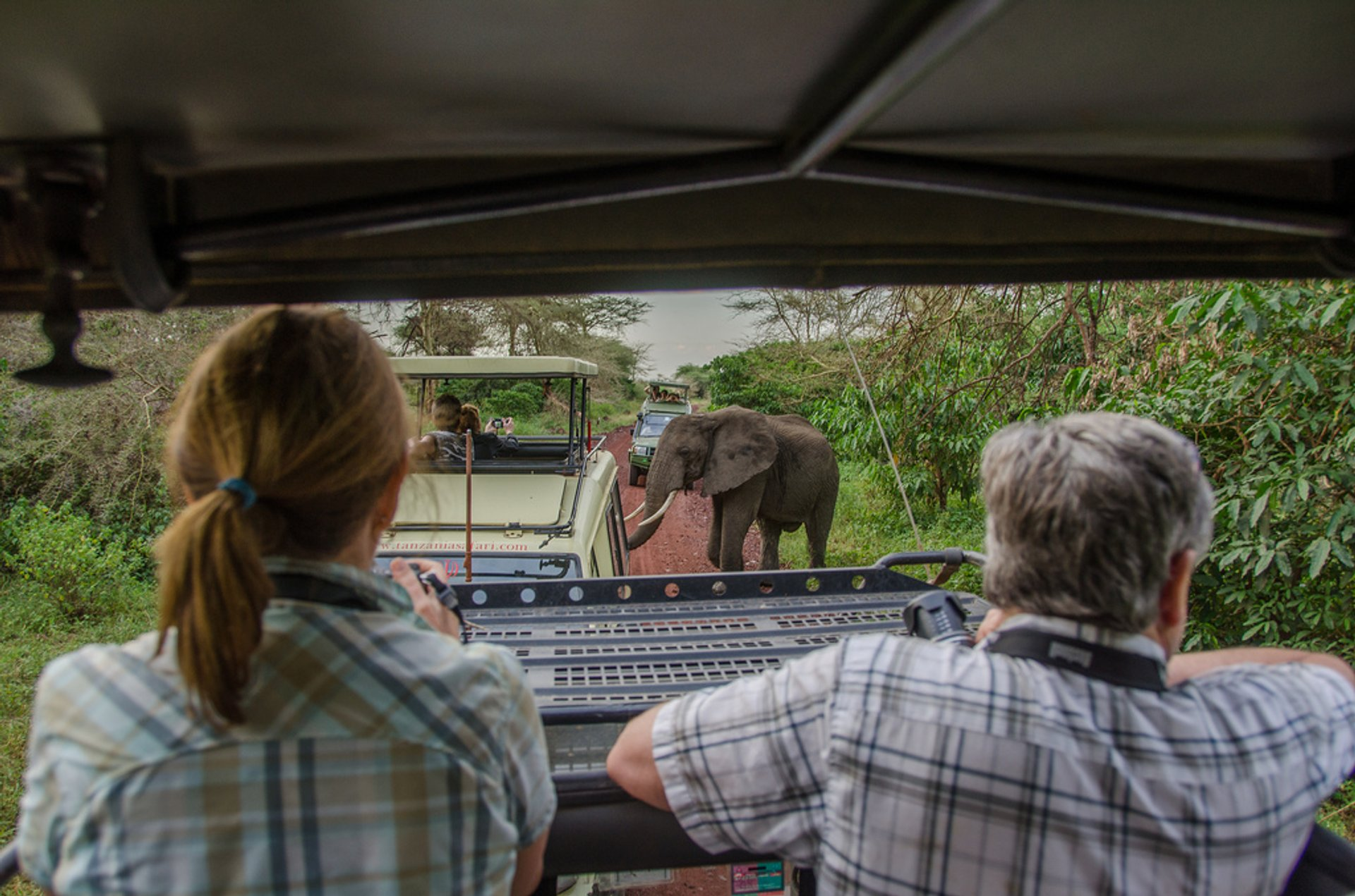 Best time for Safari in Tanzania 2019