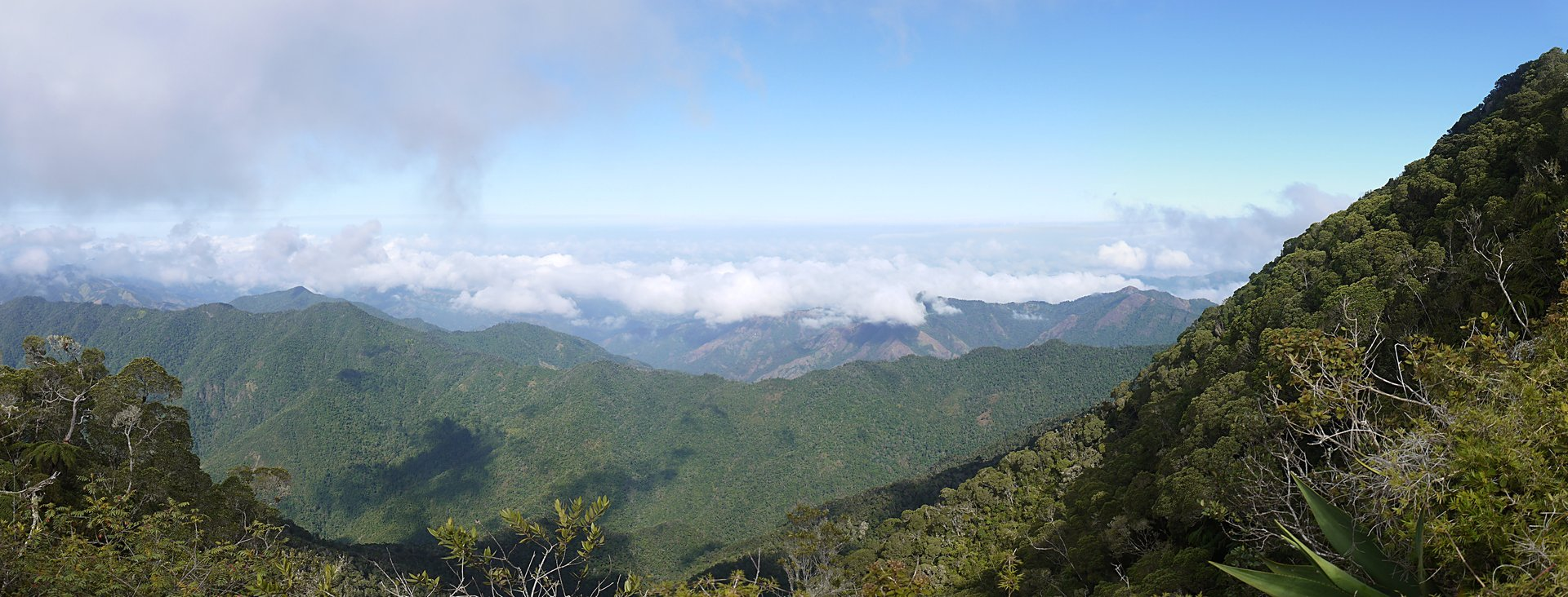 View of the Sierra Maestra and Parque Nacional Turquino 2020