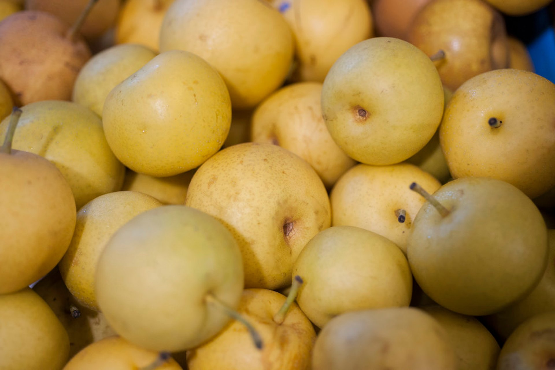 Nashi Pears in Japan 2020 - Best Time