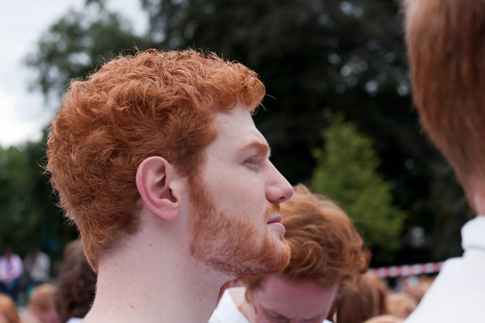 Best time to see Redhead Days (Roodharigendag) in The Netherlands 2020