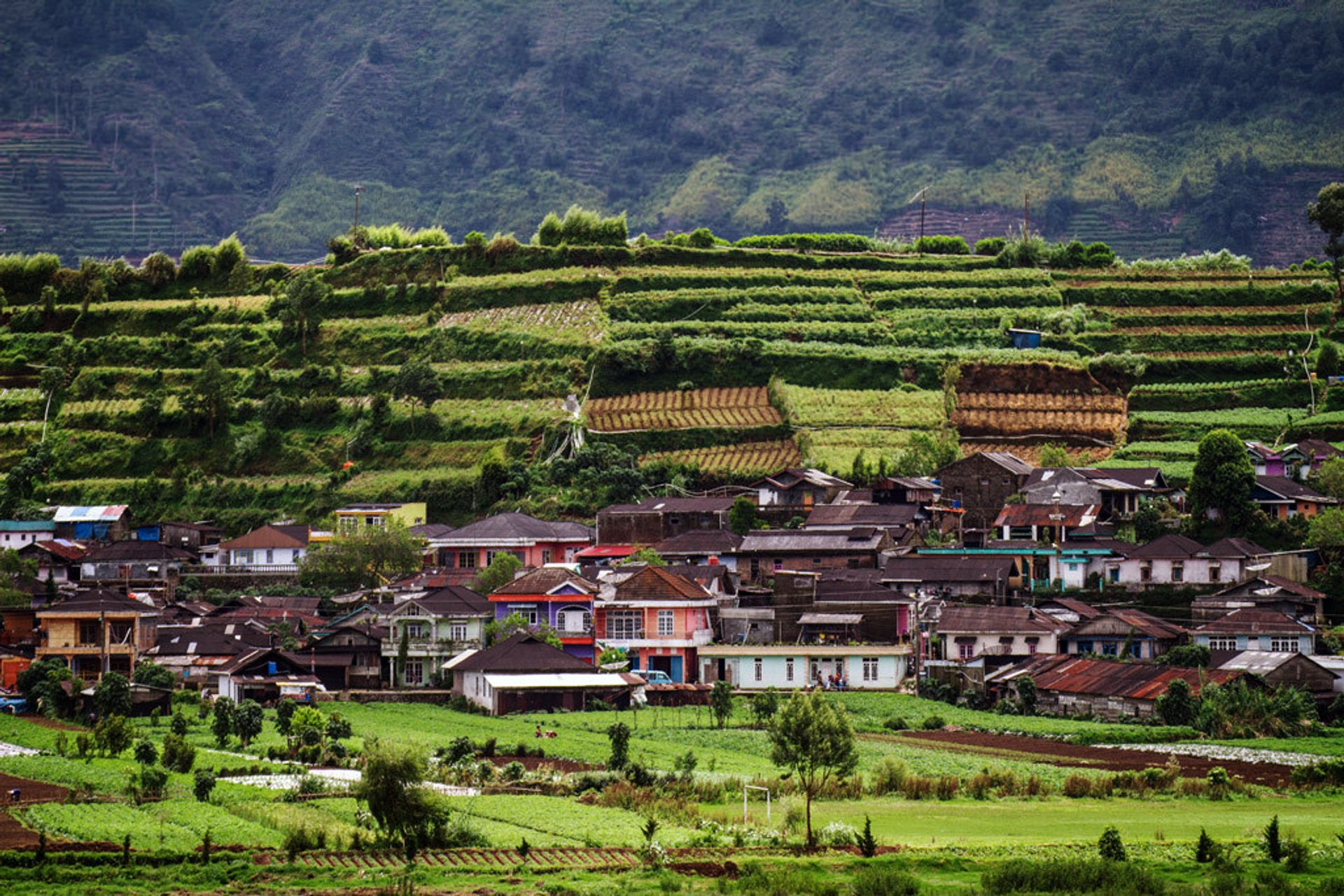 Dieng Plateau in Java - Best Season 2020
