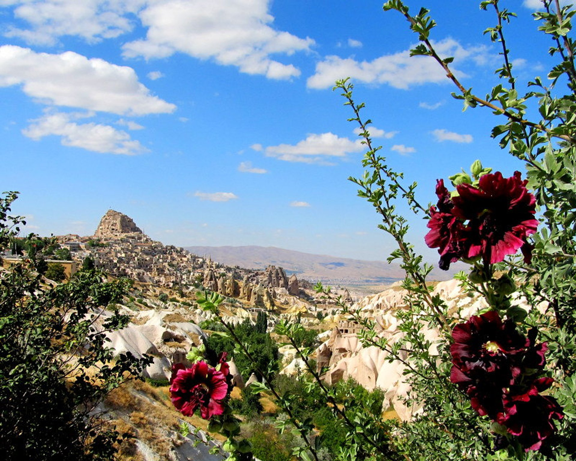 Spring Flowers in Goreme in Cappadocia - Best Time