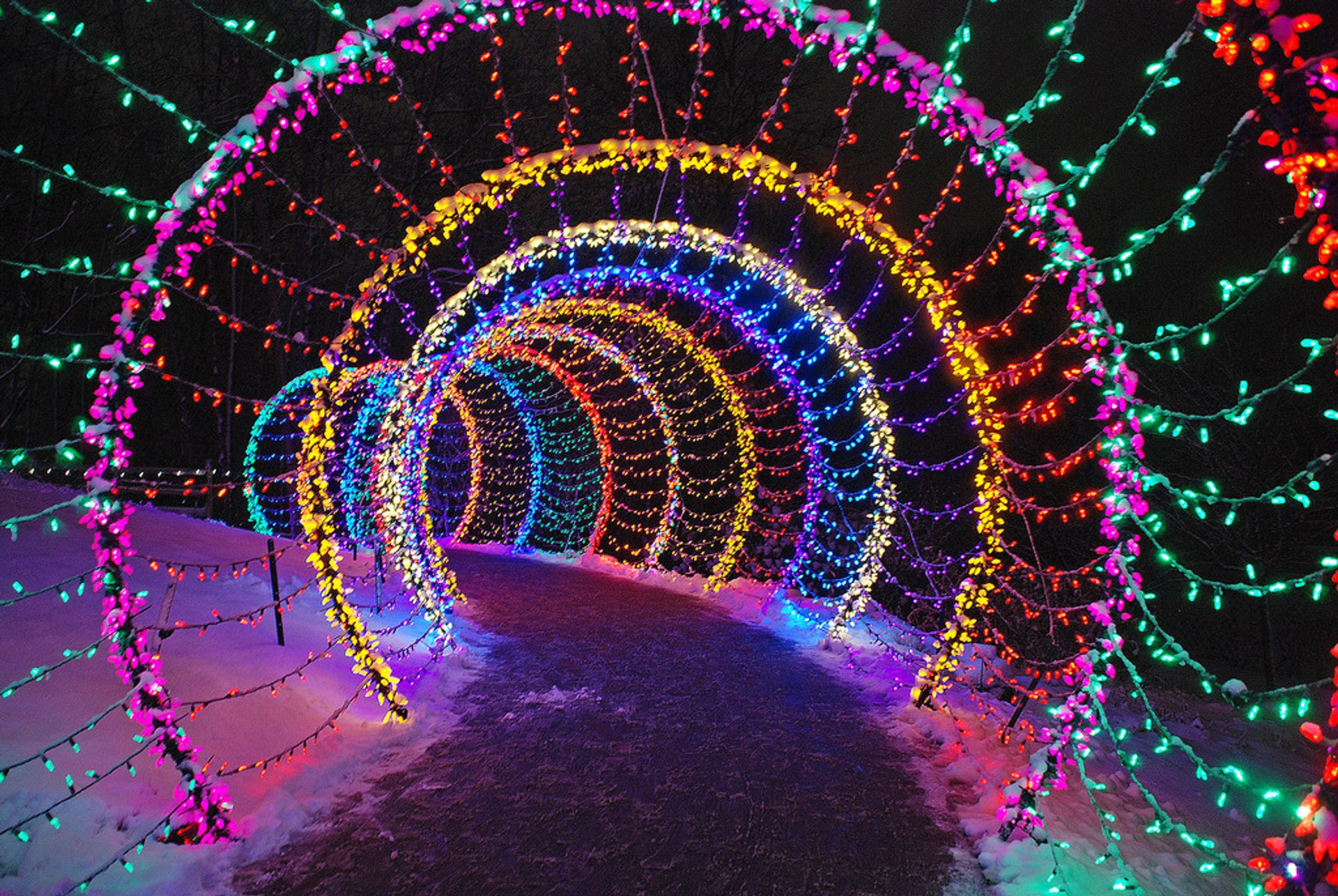 Garden of Lights at Green Bay Botanical Garden in Midwest 2020 - Best Time