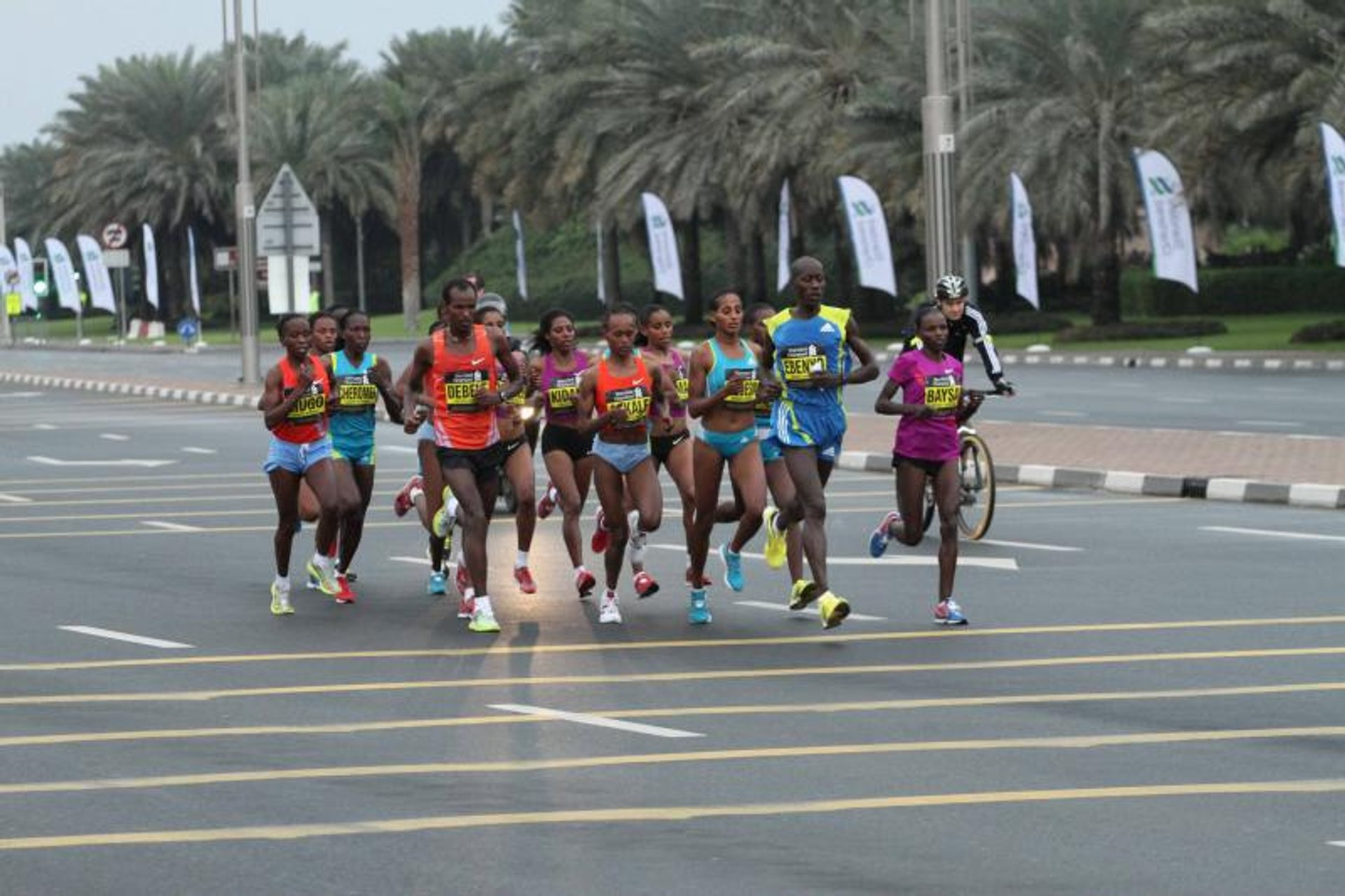 Standart Chartered Dubai Marathon in Dubai 2020 - Best Time