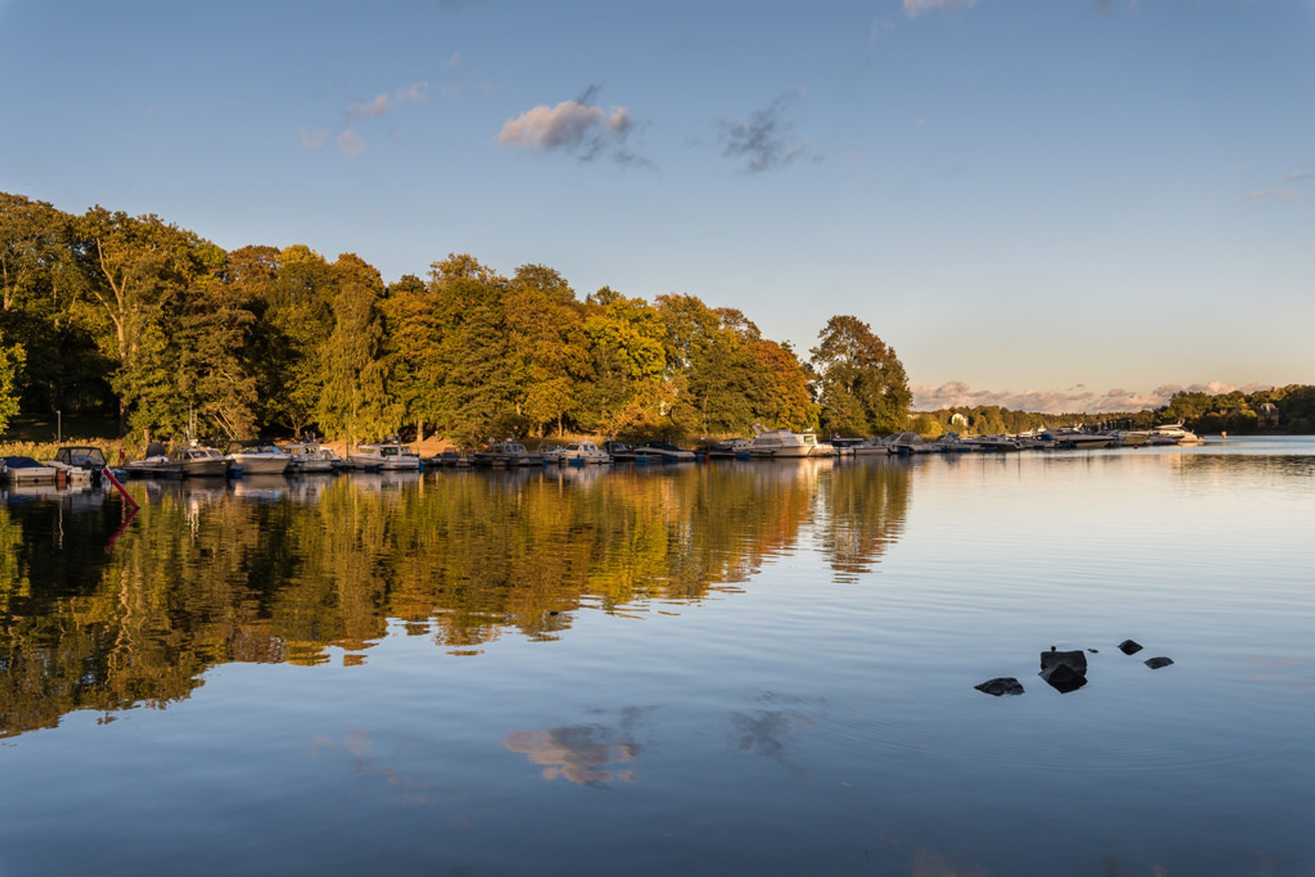 Autumn in Sweden - Best Season 2019