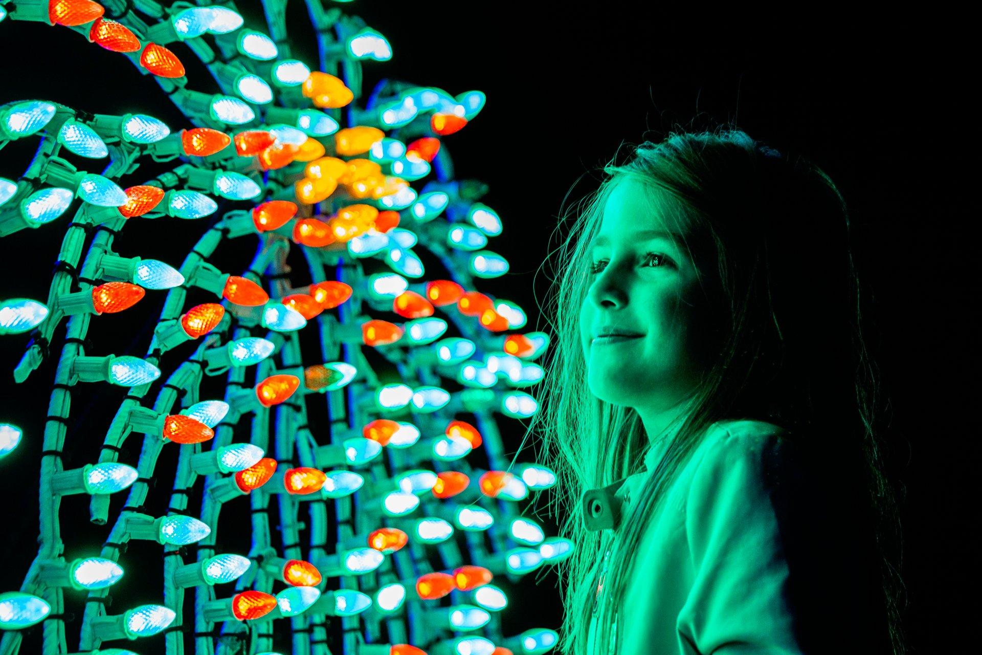 Oglebay Winter Festival of Lights in West Virginia 2020 - Best Time