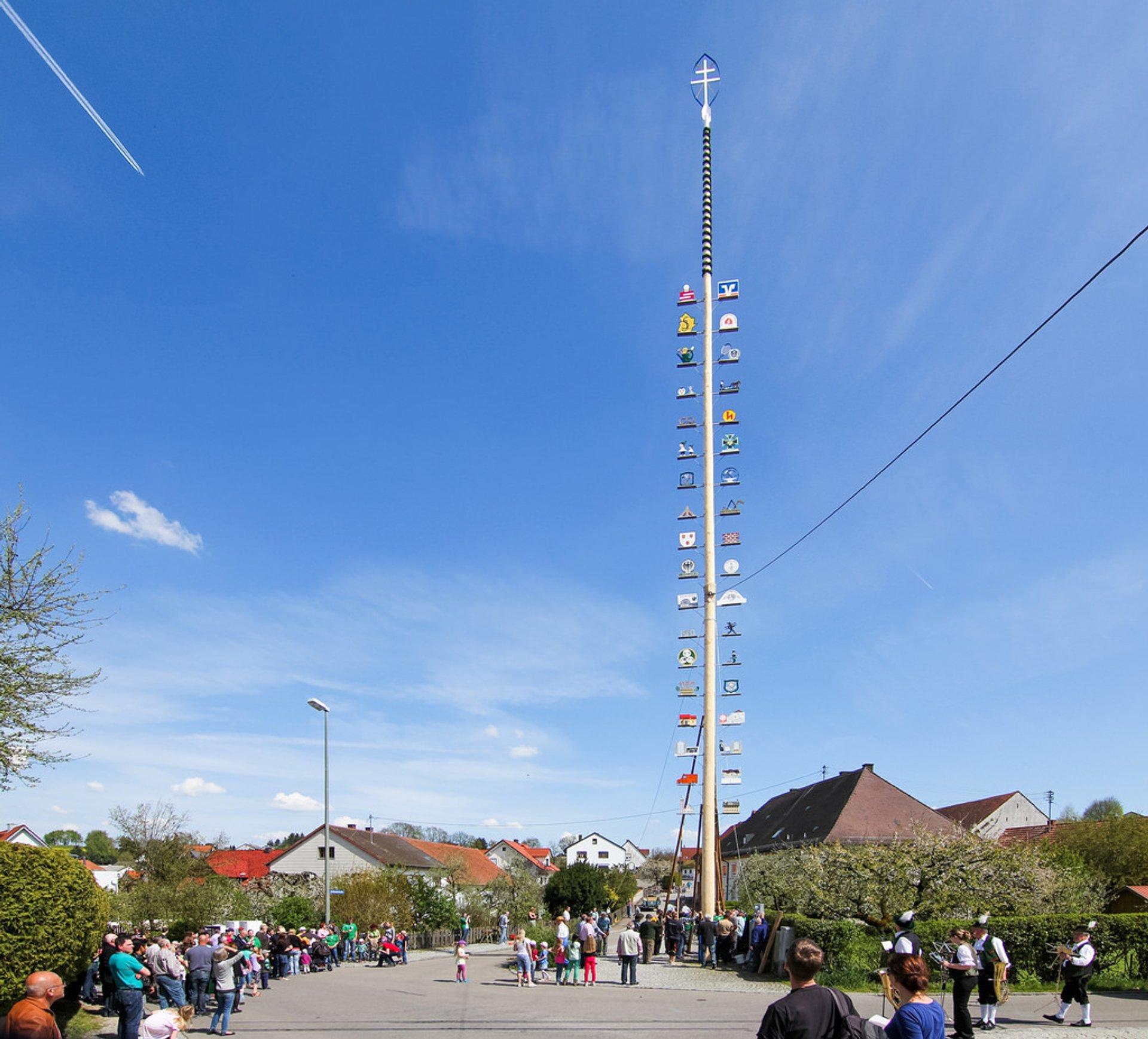 Maibaumaufstellen (May Day Festival) in Bavaria 2020 - Best Time
