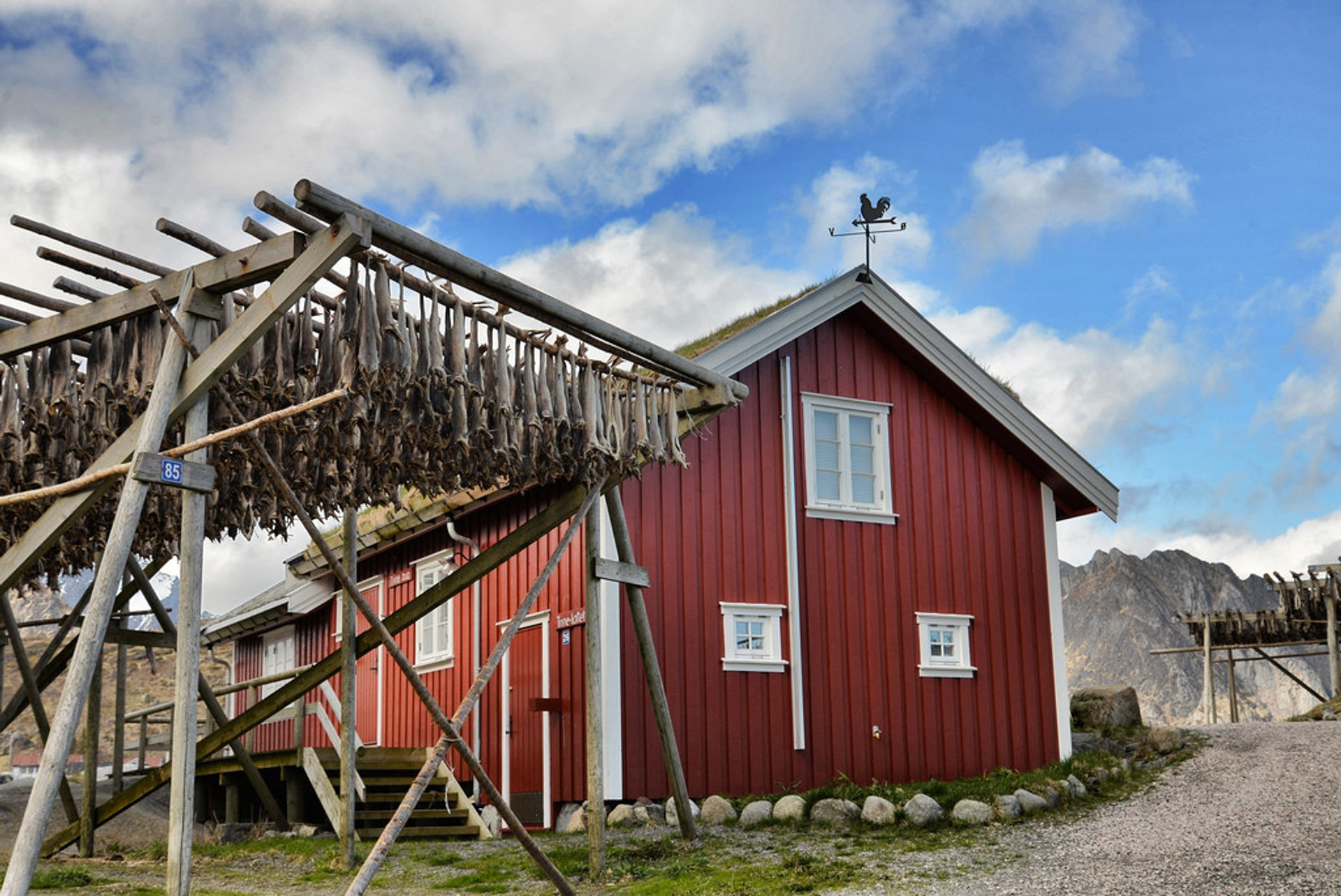 Dry Fish Rack in Norway - Best Season 2020