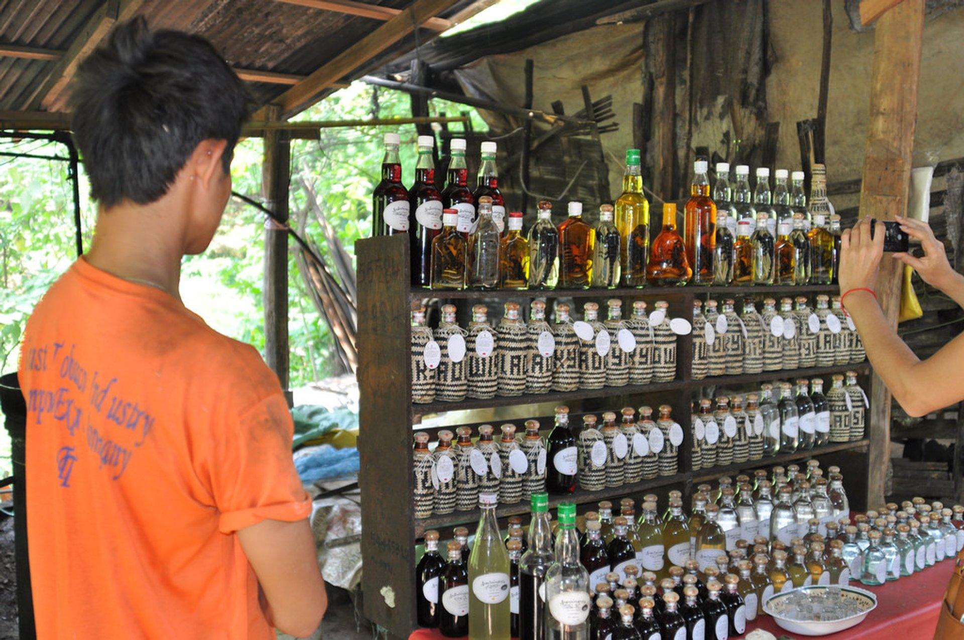 Lao-Lao Whiskey in Laos - Best Season 2020