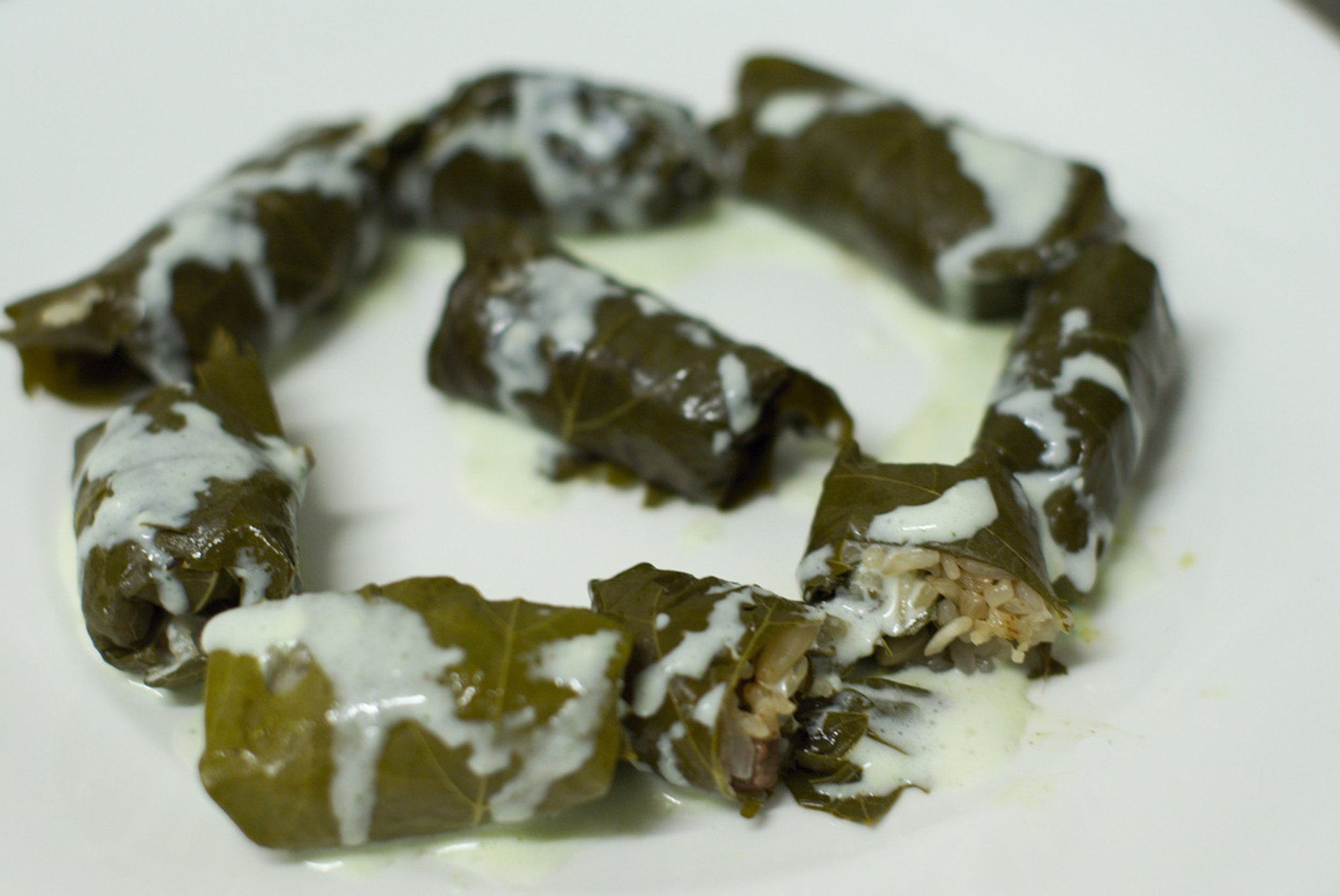 Fresh Stuffed Grape Leaves in Santorini - Best Season