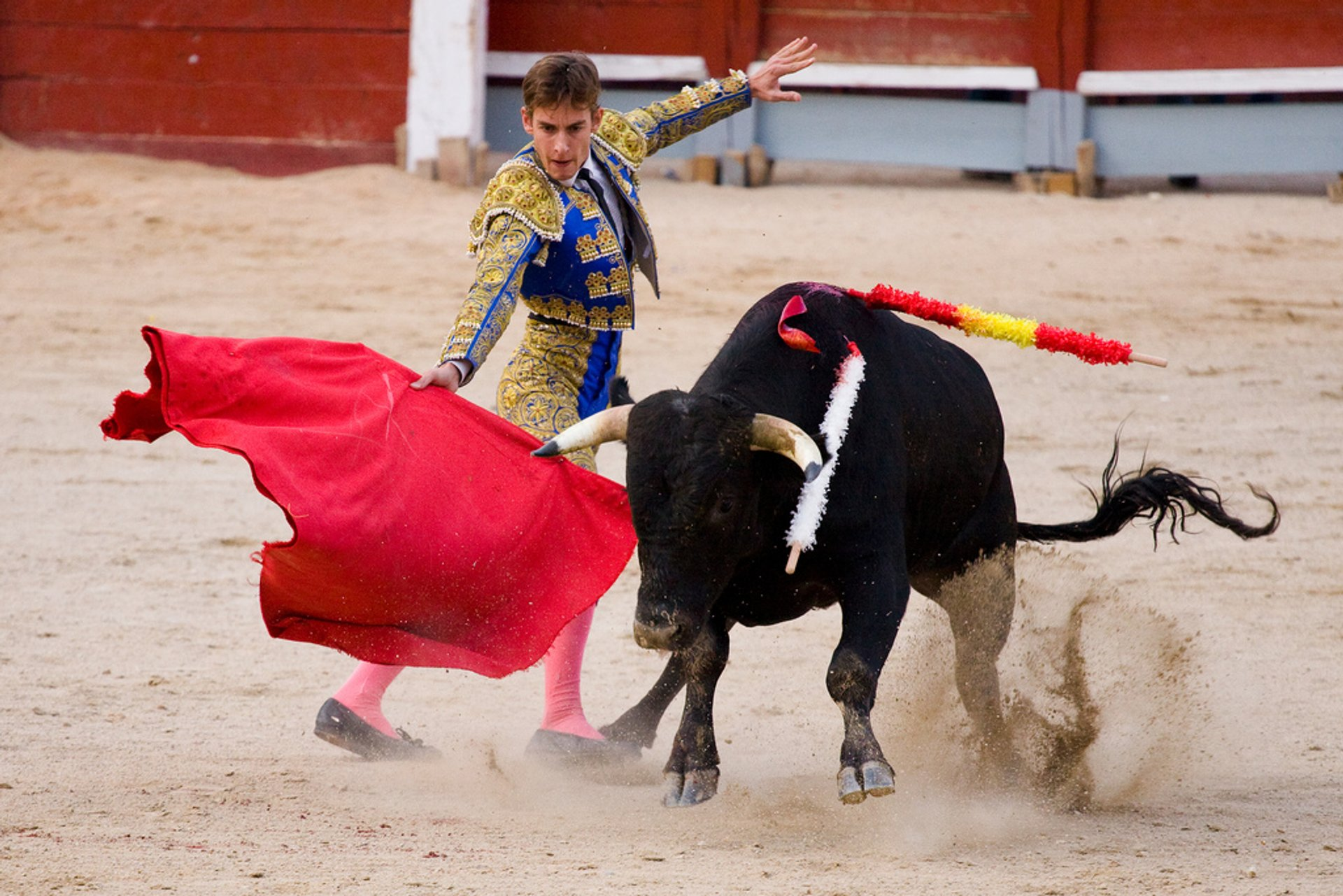 Best time for Bullfighting (Corrida de Toros) in Madrid 2020