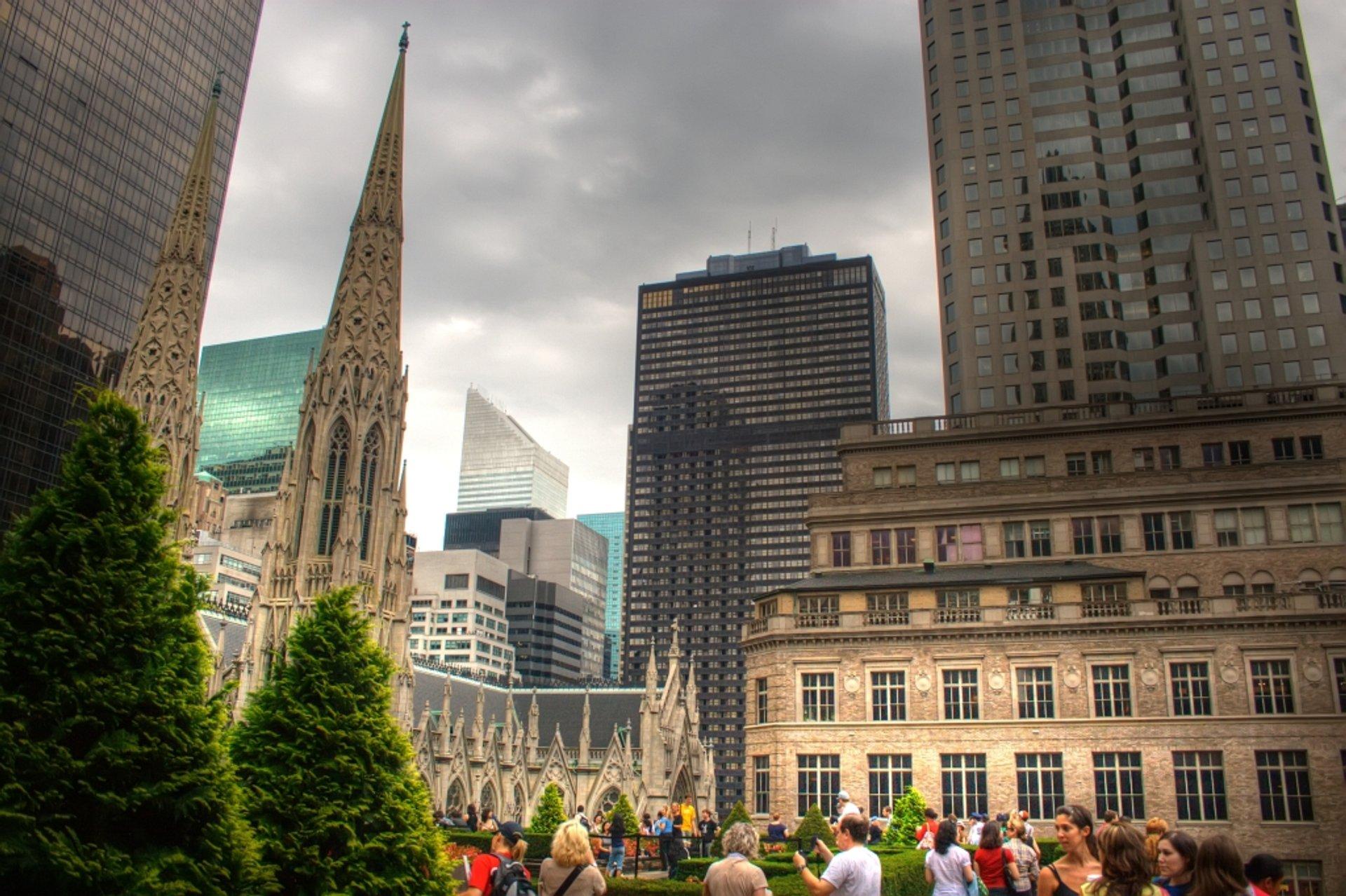 Rockefeller Rooftop Garden 2020