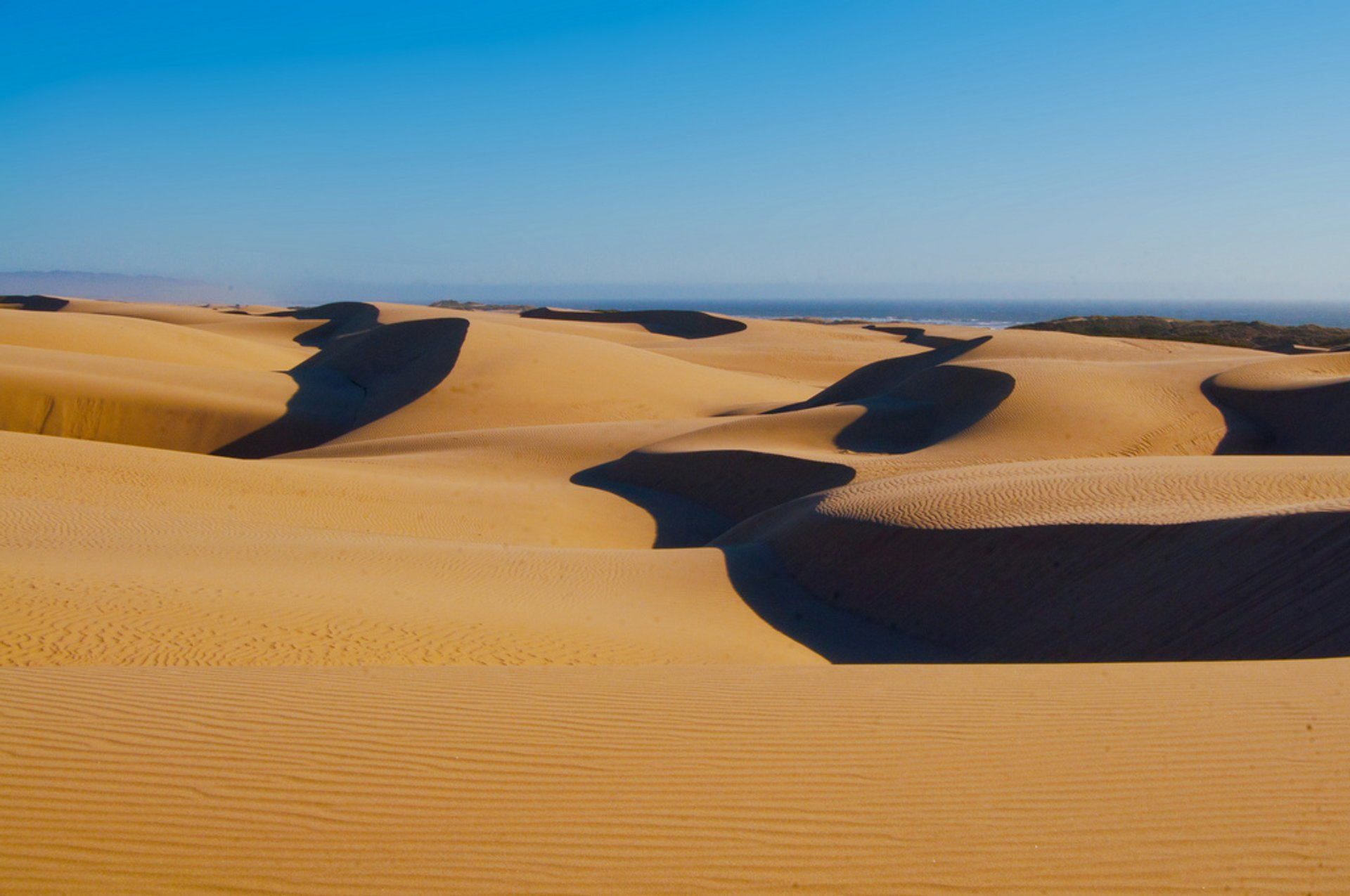 Guadalupe-Nipomo Dunes in California - Best Season 2020