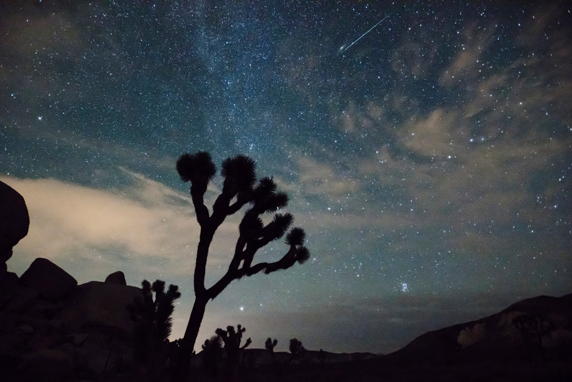 Joshua Tree National Park 2020