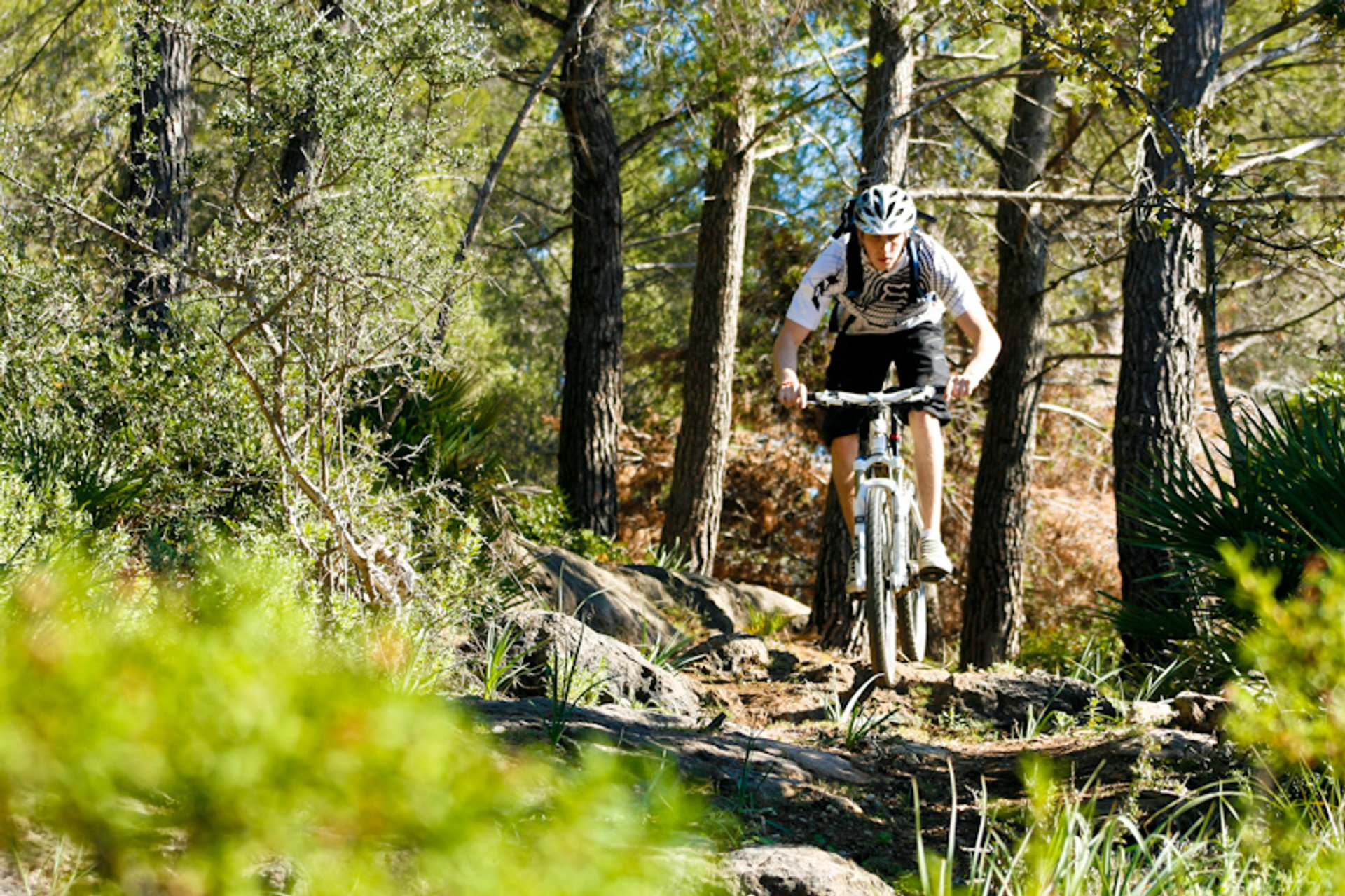 Mountain Biking in Mallorca - Best Season 2019