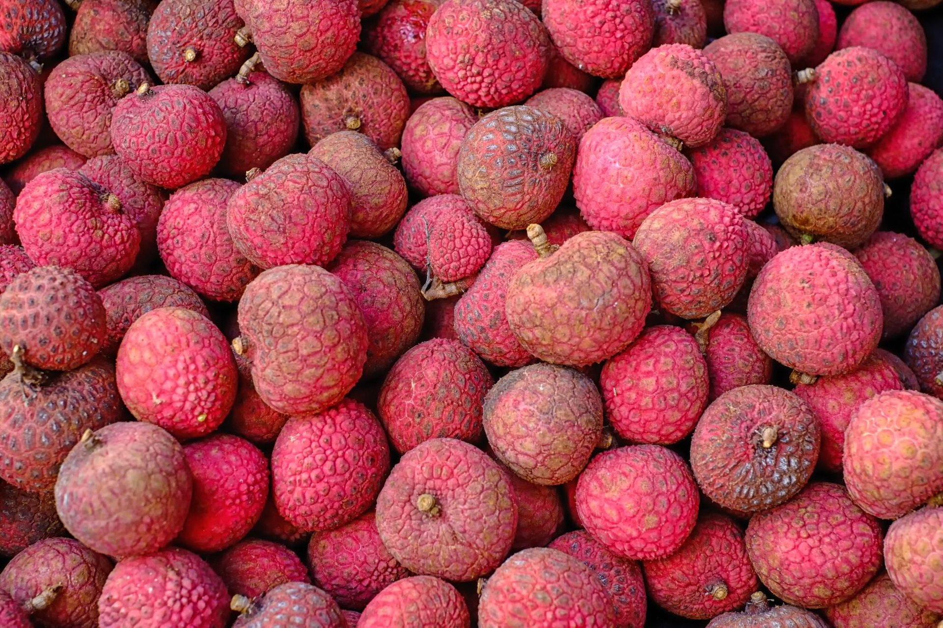 Lychee in Hawaii 2019 - Best Time