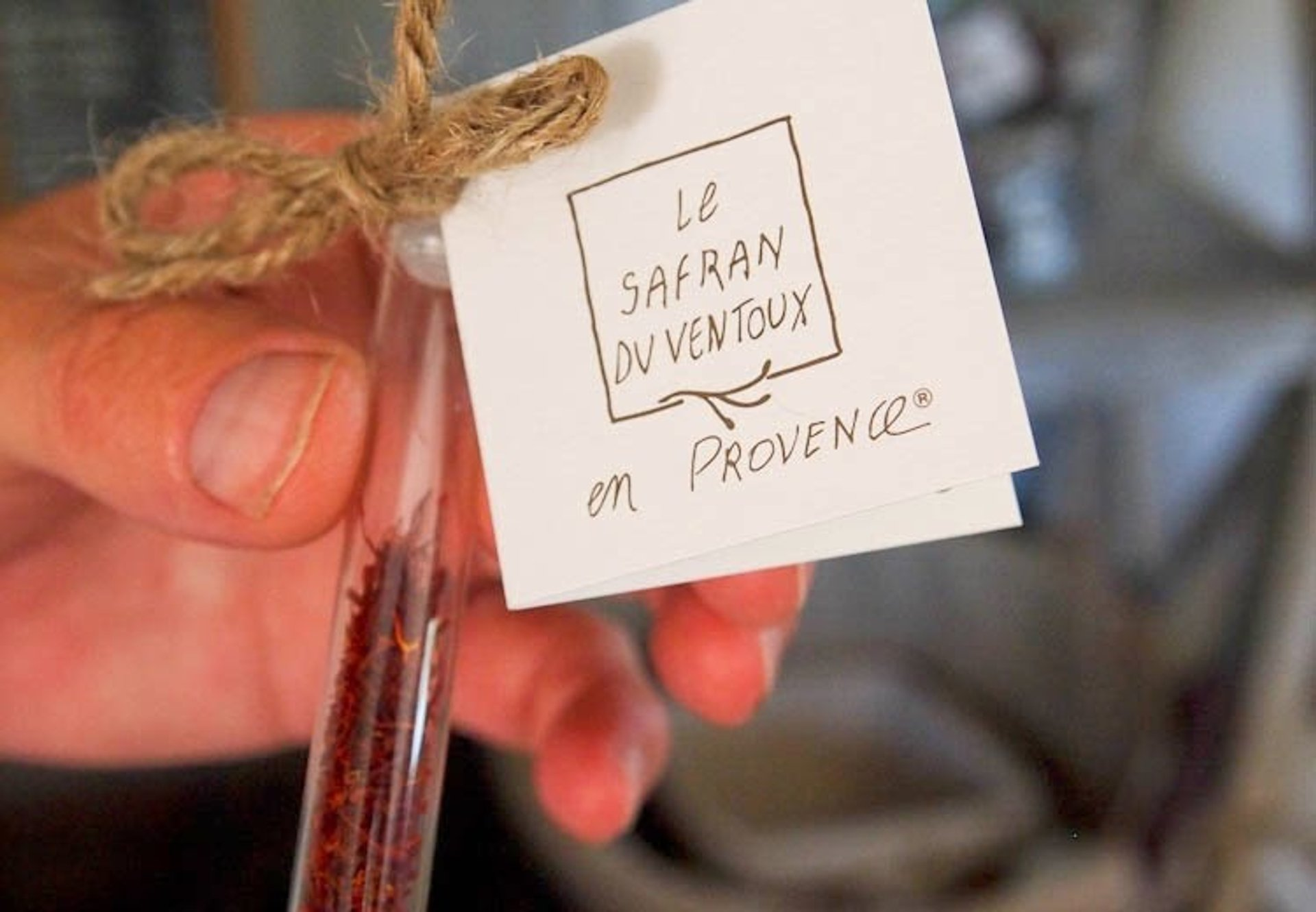 Saffron Farms in Provence & French Riviera - Best Season 2020