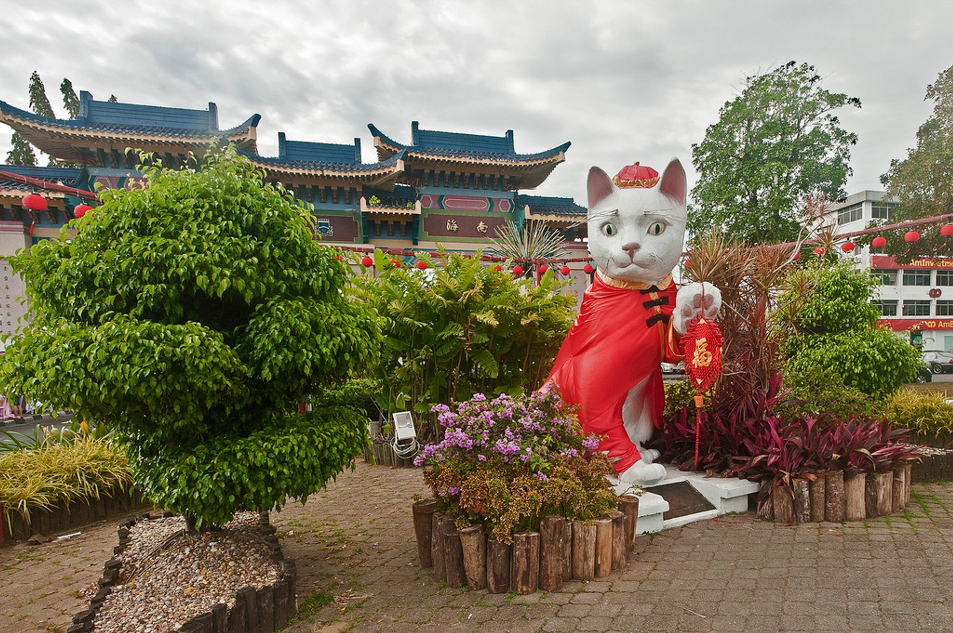 Kuching Cat City in Malaysia 2019 - Best Time