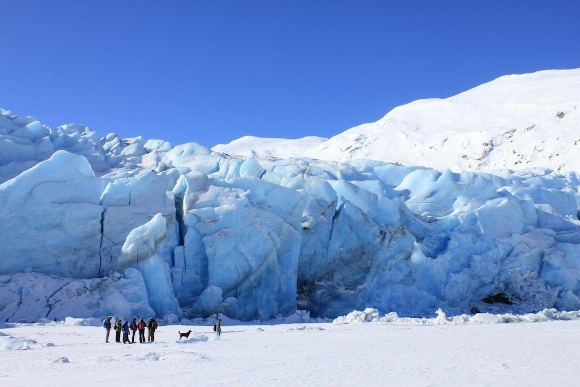 Portage Glacier 2020