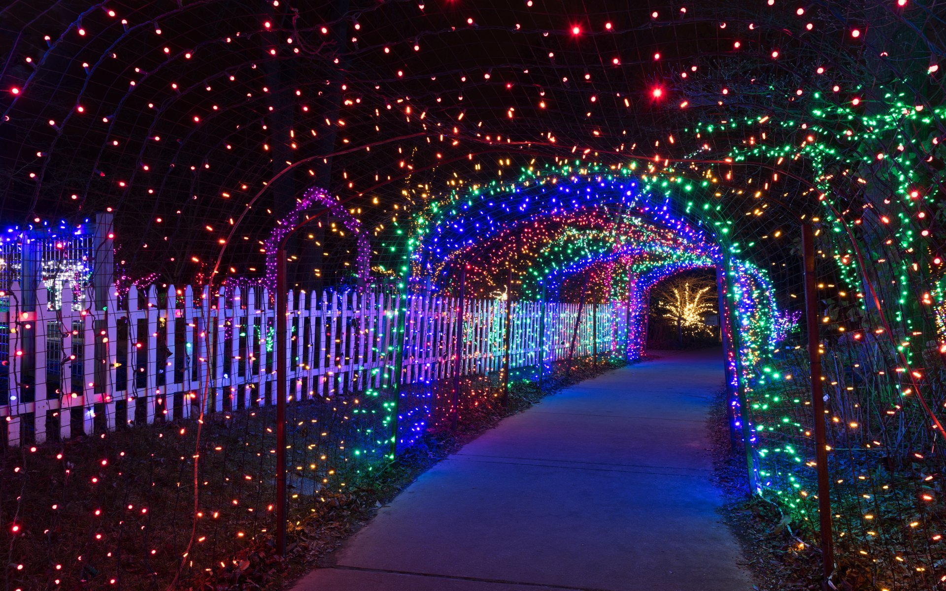The entrance to Brookside Garden's light display 2020