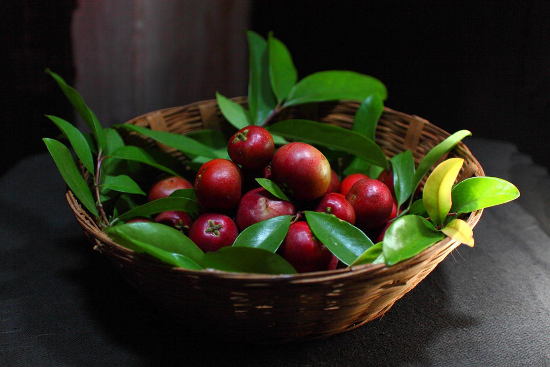 Kokum in Goa - Best Season 2019