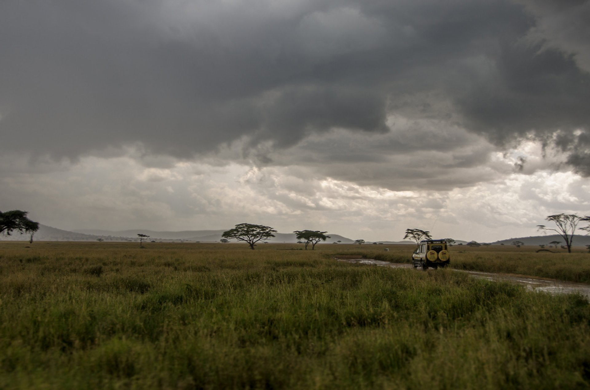 Long Rainy Season in Tanzania 2020 - Best Time